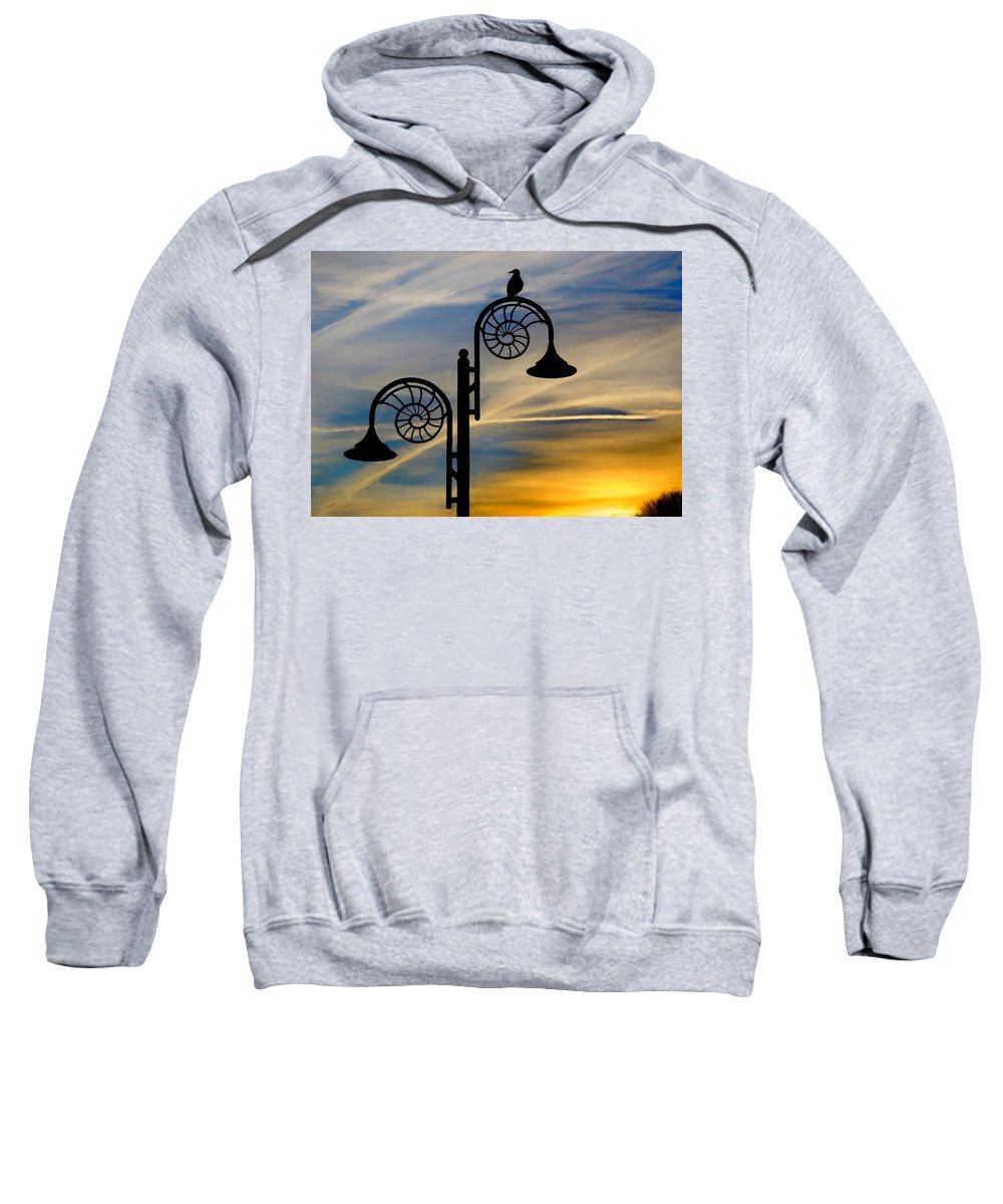 Sunset Sweatshirt featuring the painting Bird Watching The Sunset by Bruce Nutting