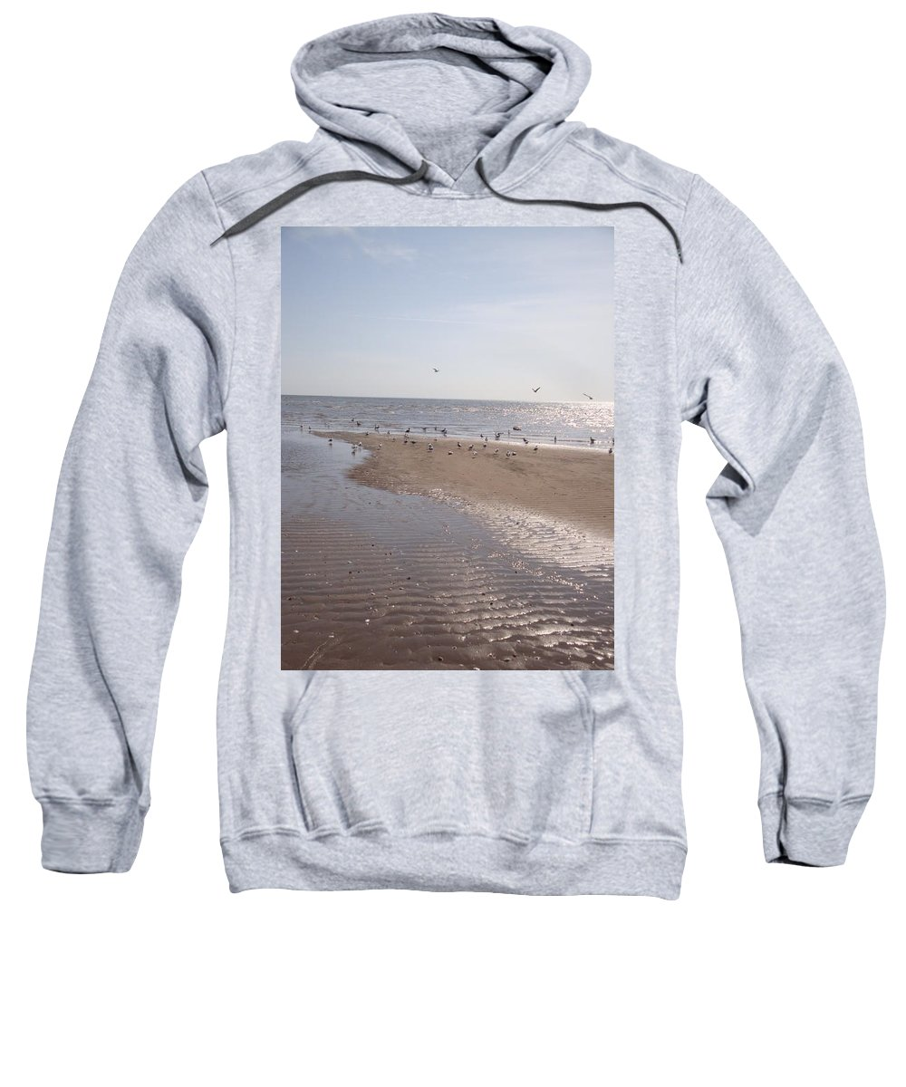 Beach Sweatshirt featuring the photograph Birds At The Beach At Low Tide by Kim Chernecky