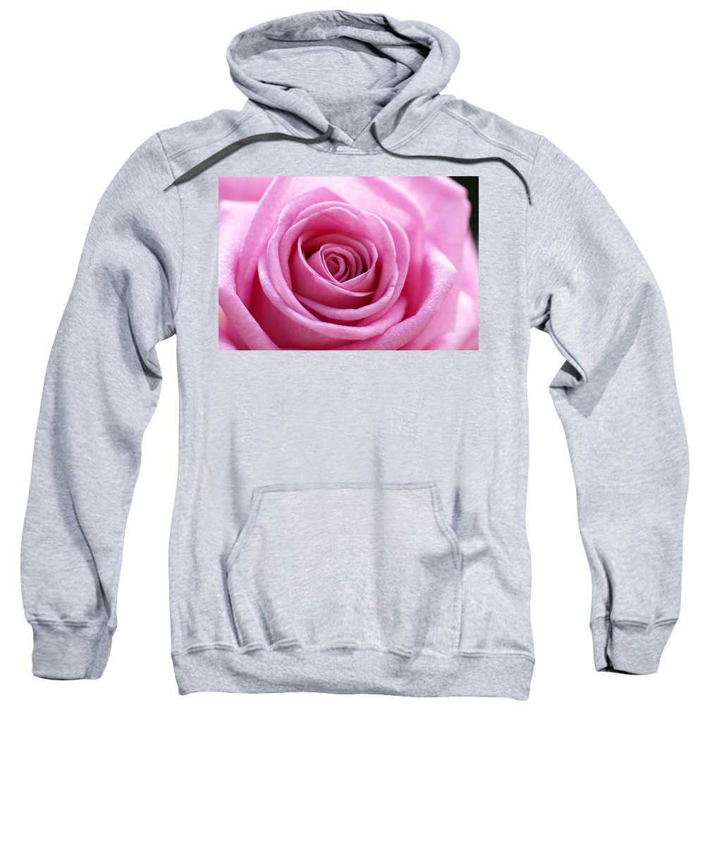 Pink Sweatshirt featuring the photograph Birthday Pink by Carol Lynch