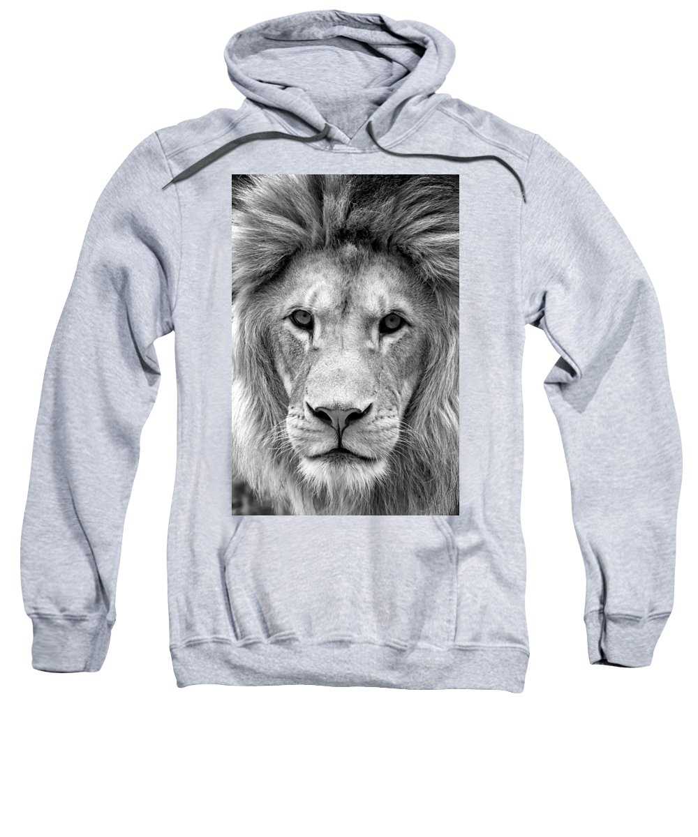 African Sweatshirt featuring the photograph Black And White Portrait Of A Lion by Jaroslav Frank