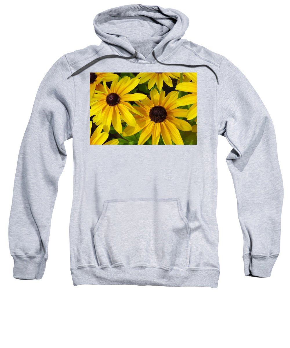 Black Eyed Susan Sweatshirt featuring the photograph Black Eyed Susans by Suzanne Gaff