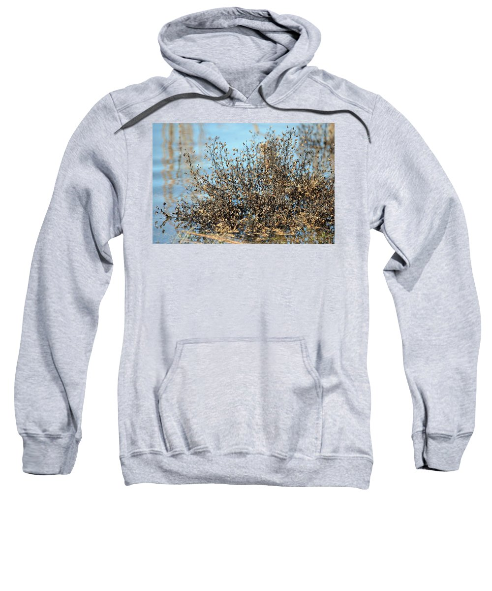 Blackened Gold Sweatshirt featuring the photograph Blackened Gold by Maria Urso
