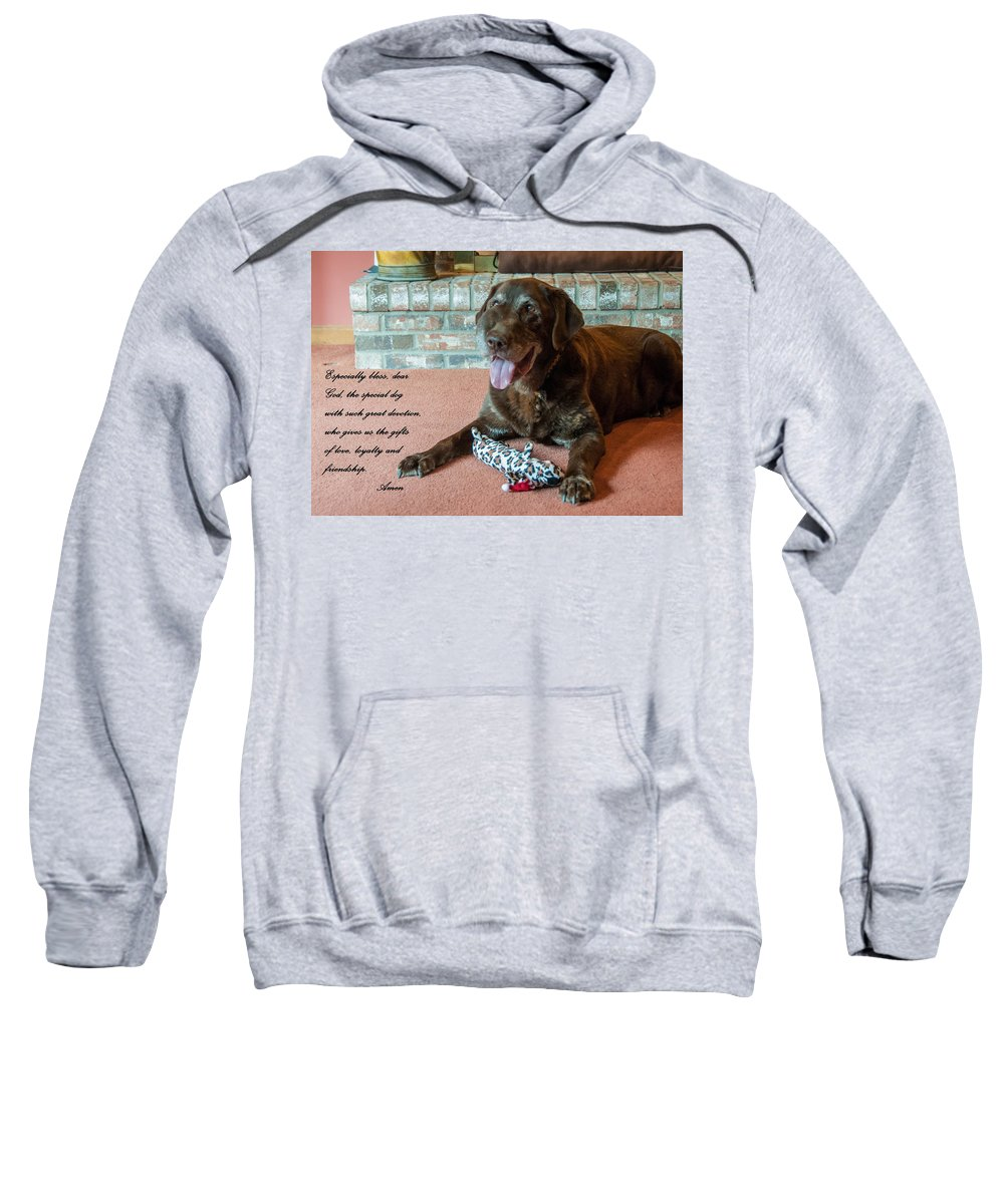 Dog Sweatshirt featuring the photograph Bless This Dog by Guy Whiteley