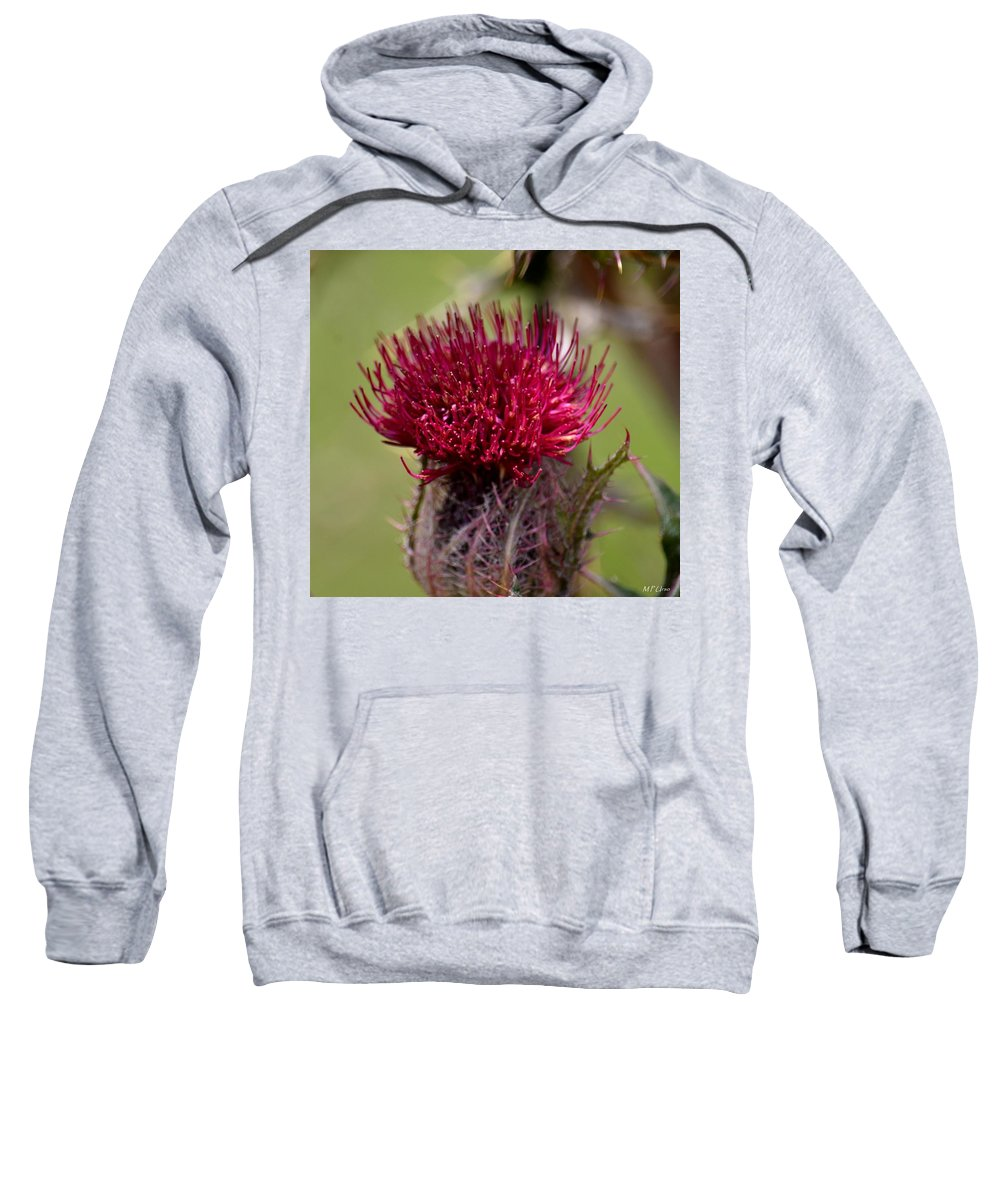 Blooming Spear Thistle Sweatshirt featuring the photograph Blooming Spear Thistle by Maria Urso