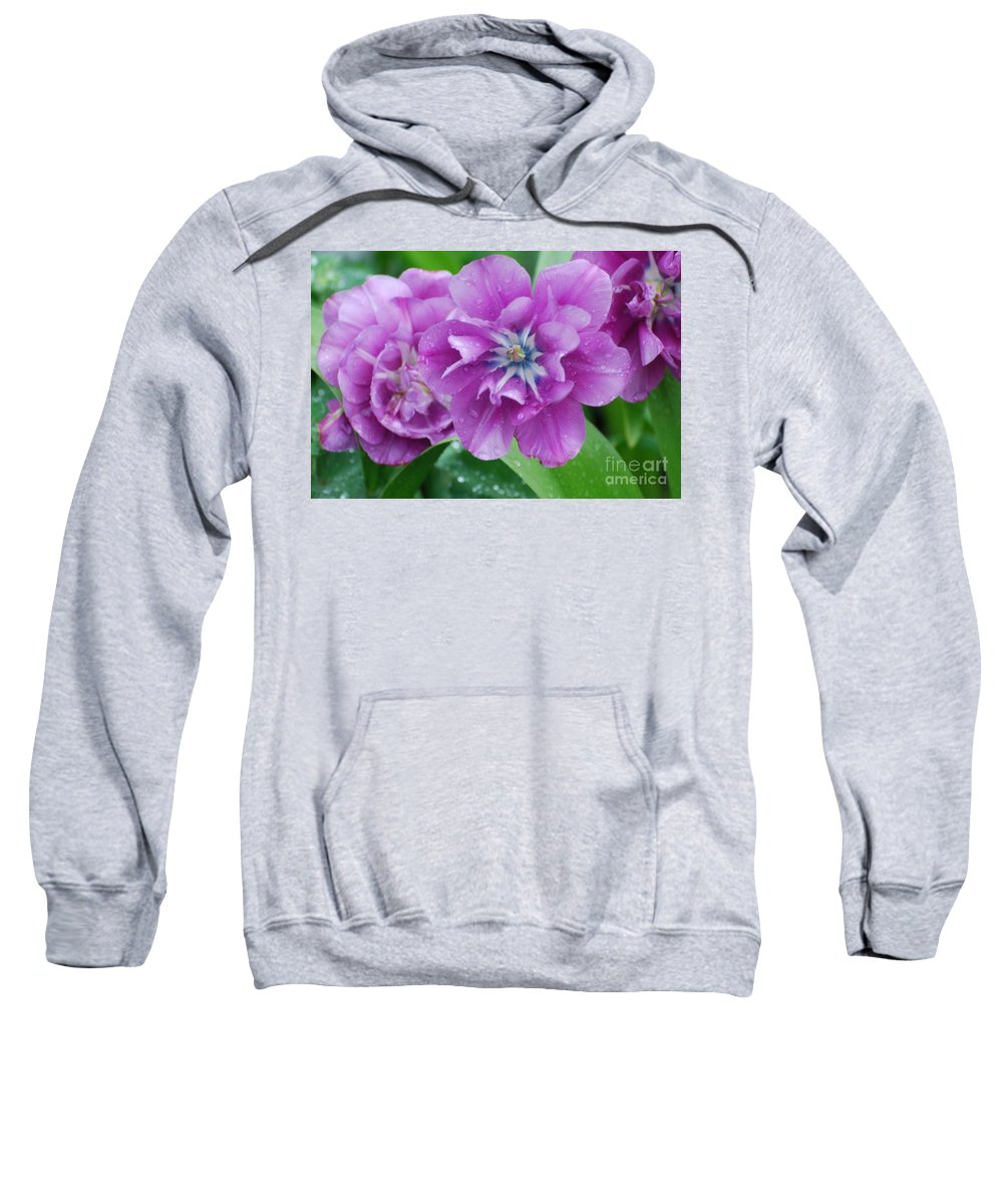 Tulip Sweatshirt featuring the photograph Blooming Tulips by DejaVu Designs
