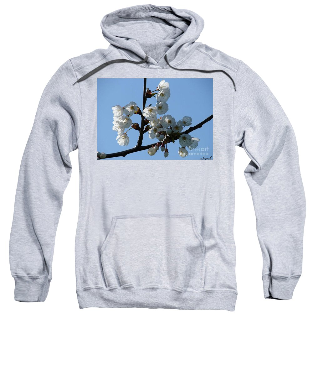 Blossoms Sweatshirt featuring the photograph Blossoms by Carol Lynch