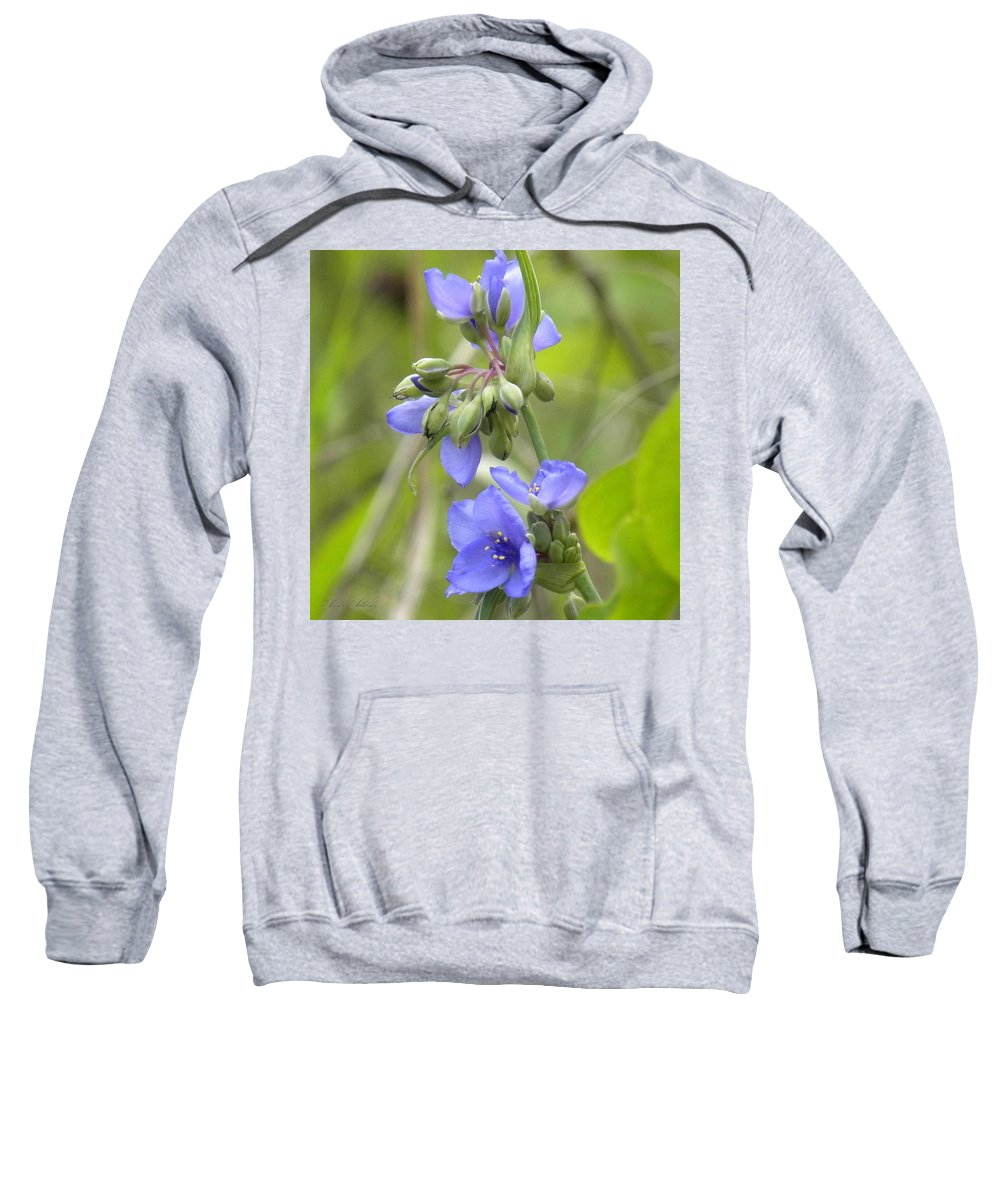 Blue Sweatshirt featuring the photograph Blue Beauty by Annie Adkins