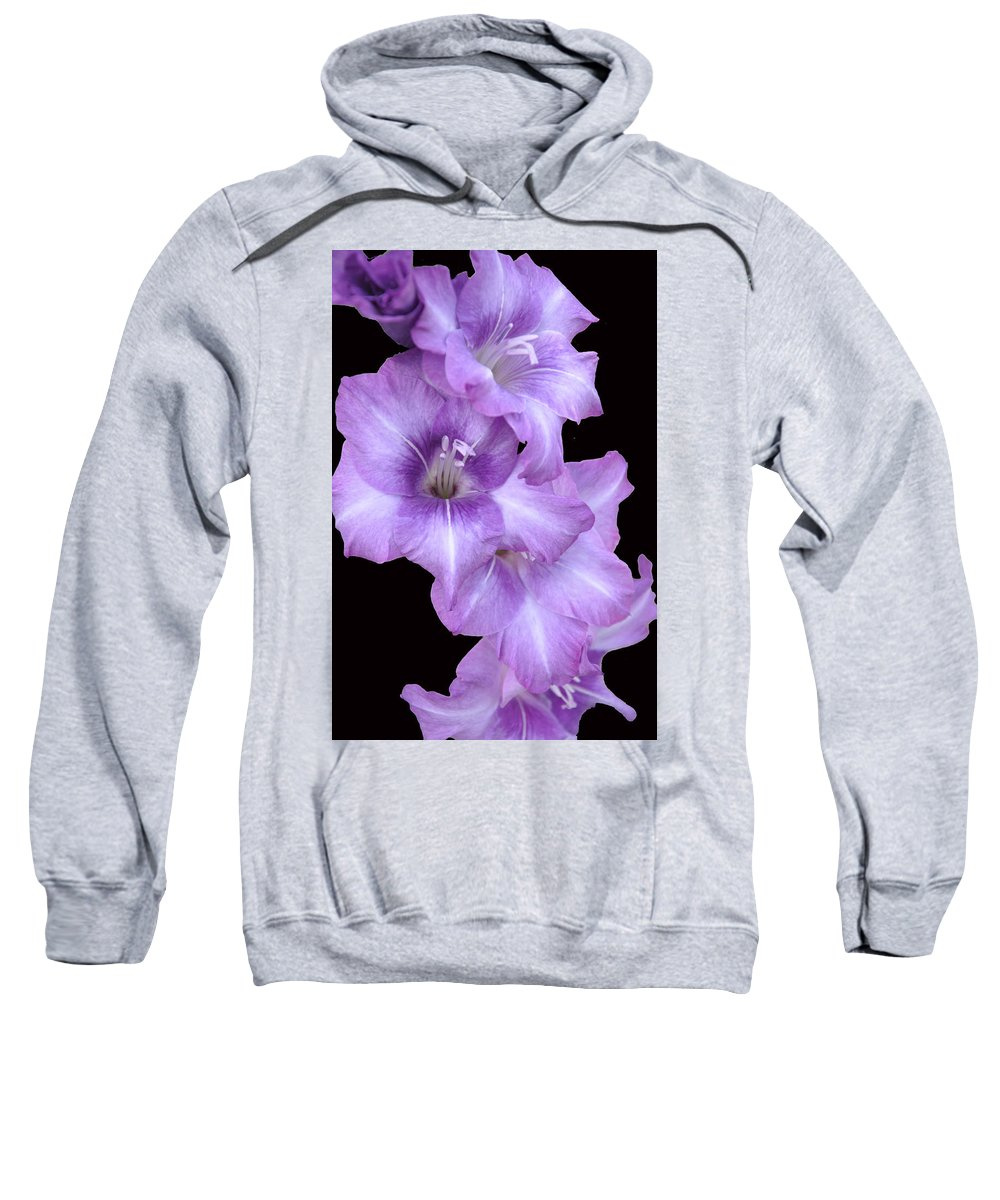 Gladiolus Sweatshirt featuring the photograph Blue Flame by Deborah Good
