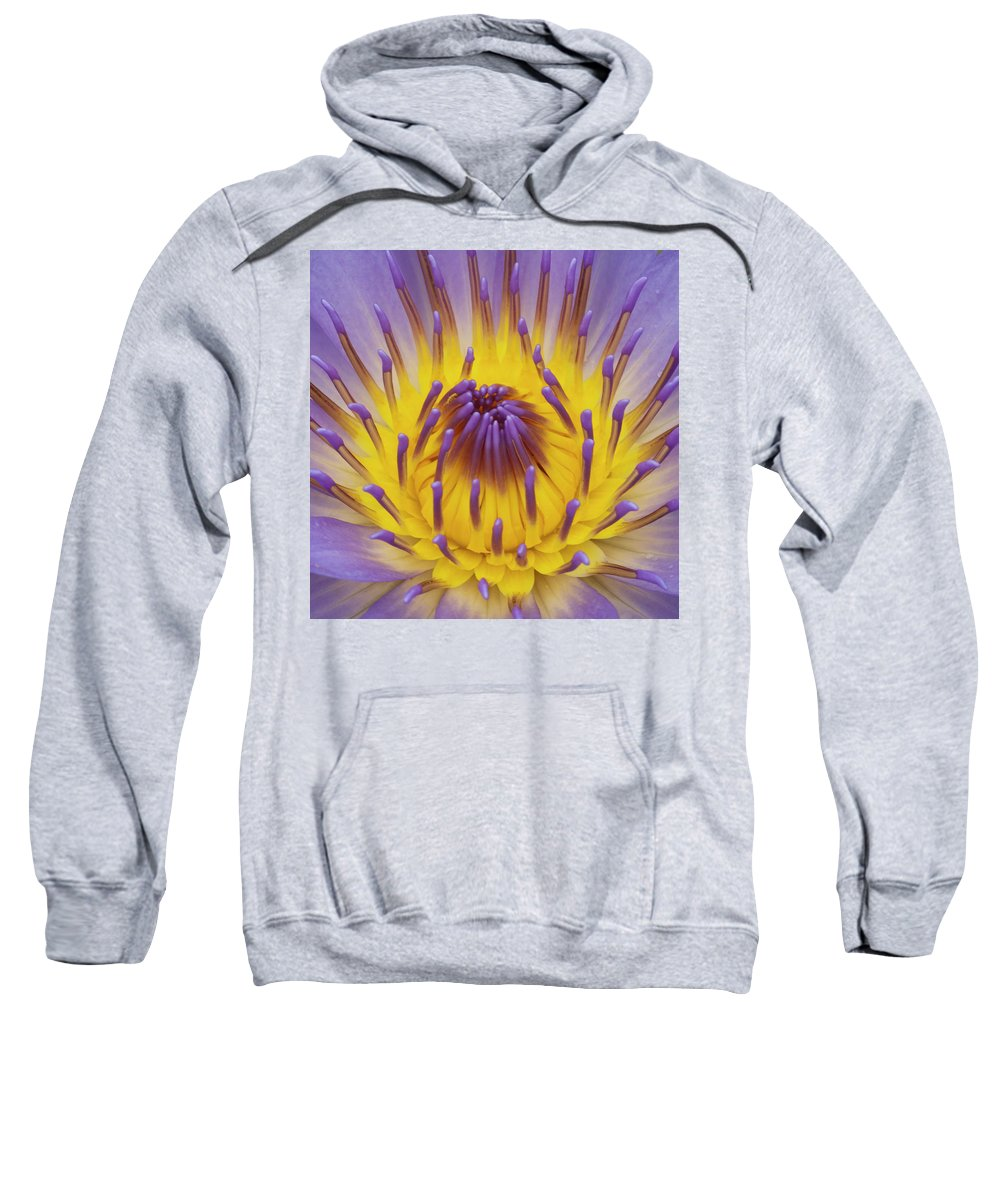 Water Lily Sweatshirt featuring the photograph Blue Water Lily by Heiko Koehrer-Wagner