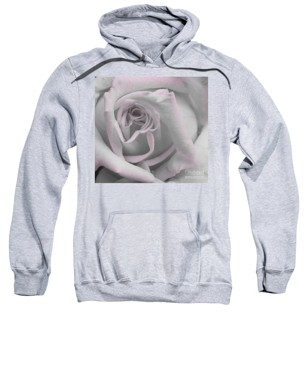 Rose Sweatshirt featuring the photograph Blush Rose by Jim And Emily Bush