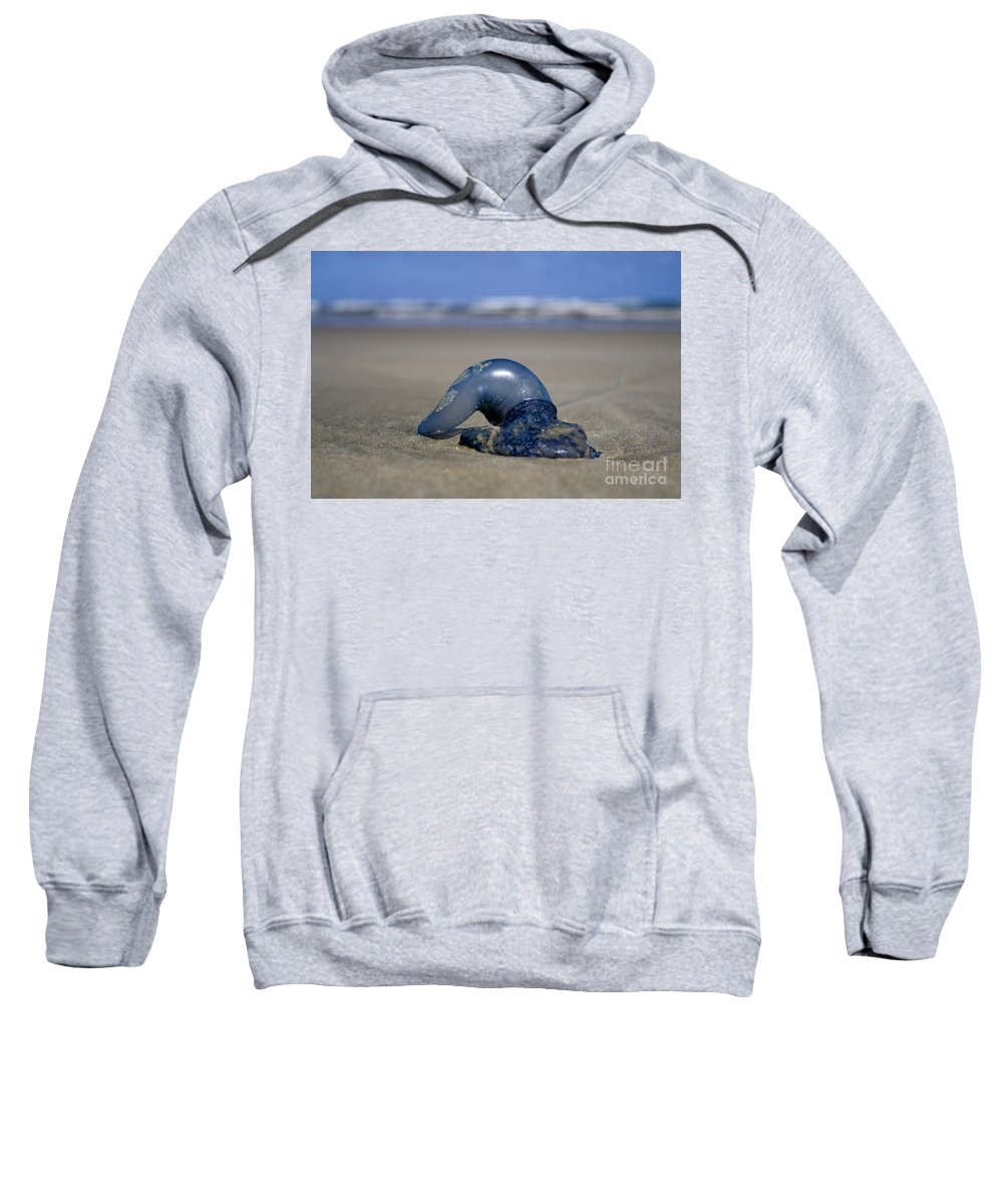 Baylys Beach Sweatshirt featuring the photograph Bottle Of Blue by Kym Clarke
