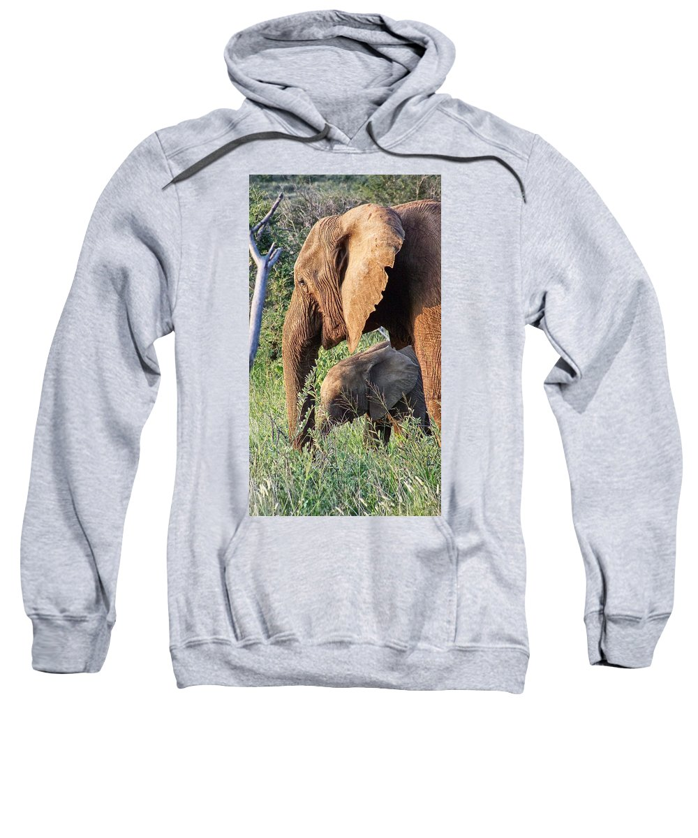 Elephant Bull Sweatshirt featuring the photograph Breakfast With Mother by Douglas Barnard
