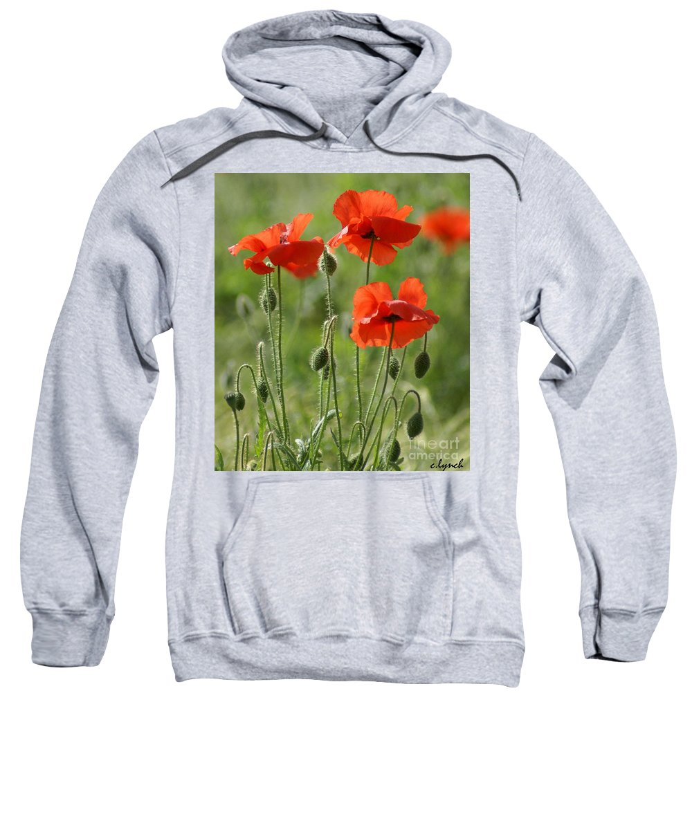 Poppies Sweatshirt featuring the photograph Bright Poppies 1 by Carol Lynch