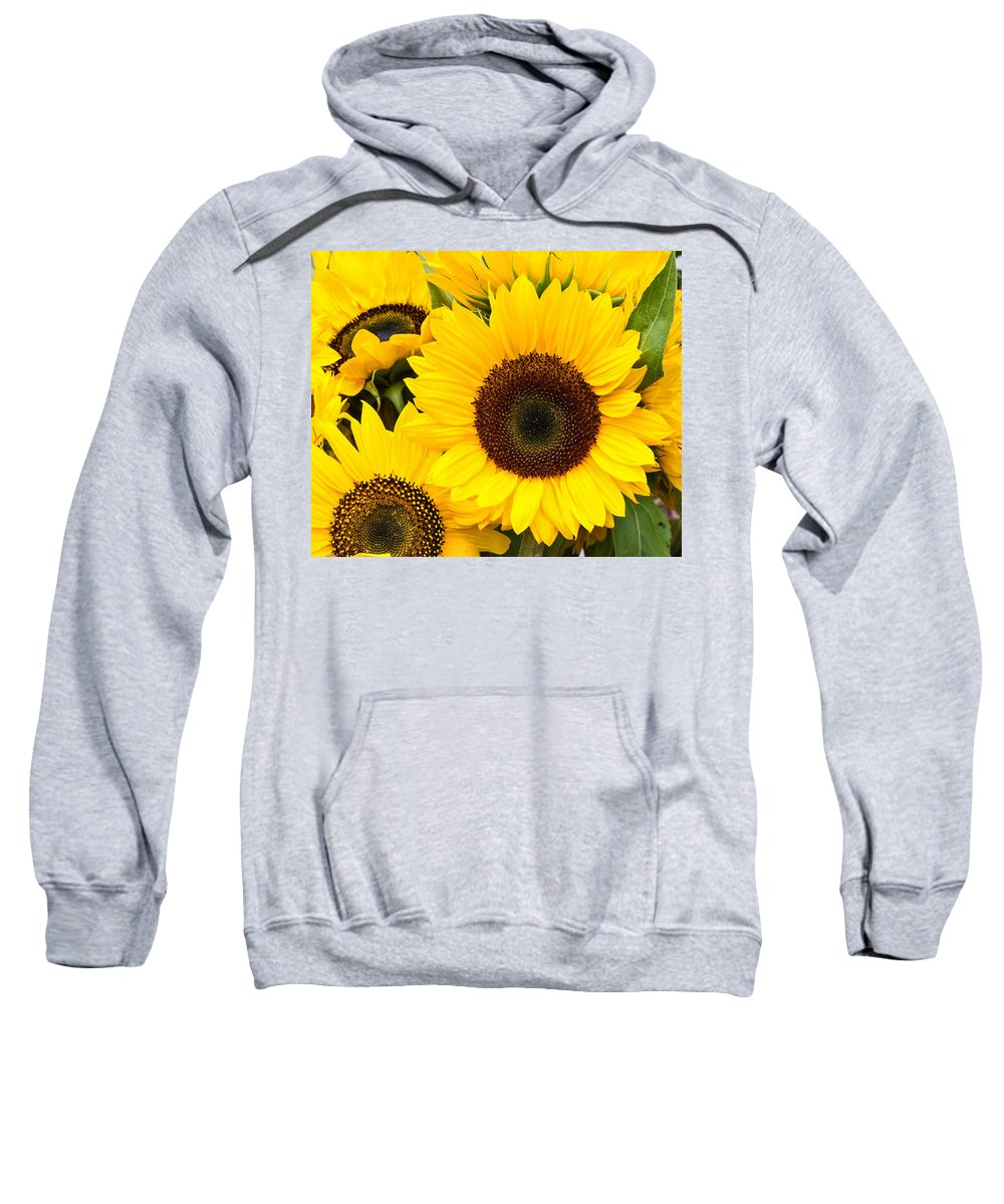 Agriculture Sweatshirt featuring the photograph Bright Sunflower Blossoms by John Trax