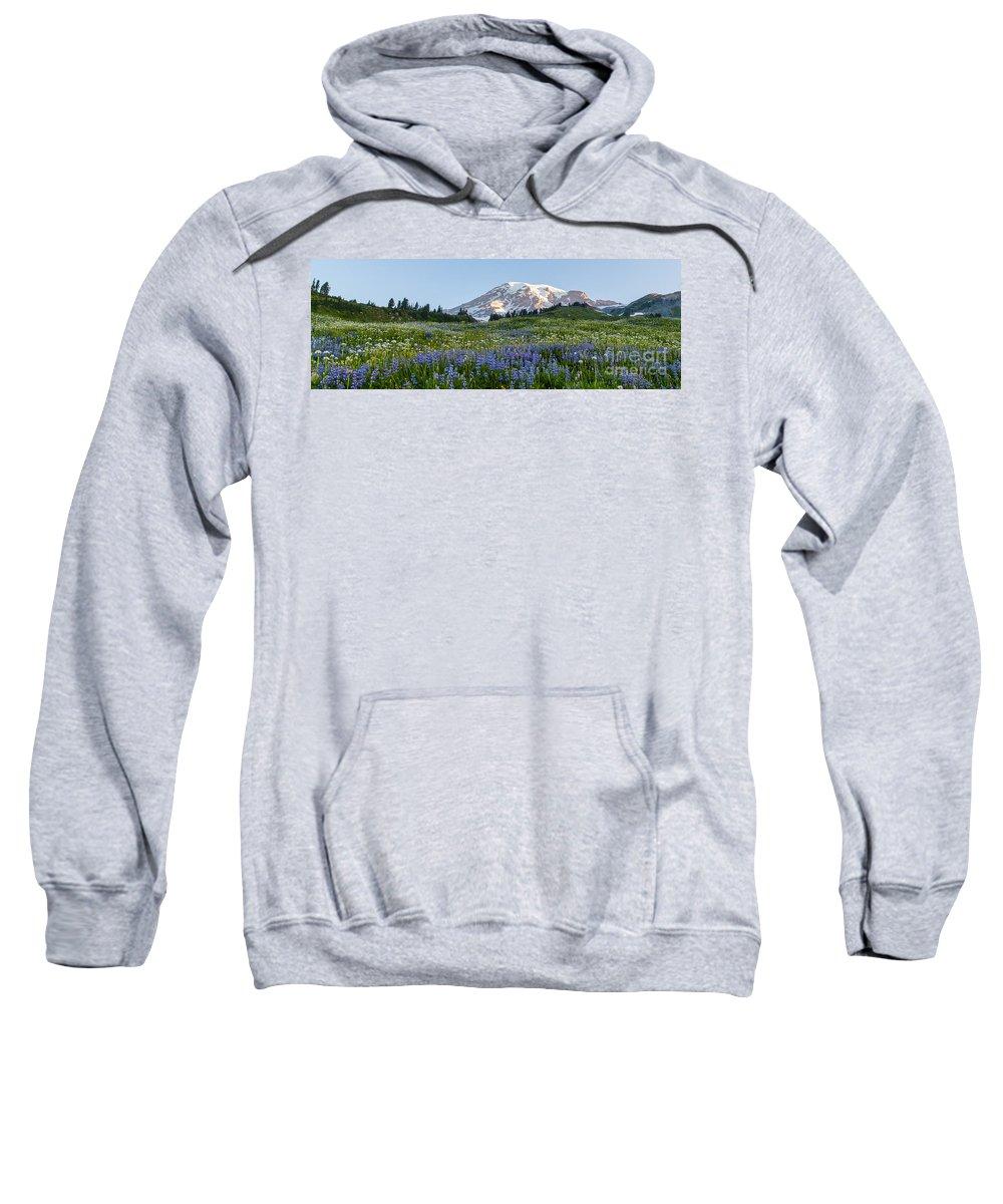 Rainier Sweatshirt featuring the photograph Brilliant Meadow by Mike Reid