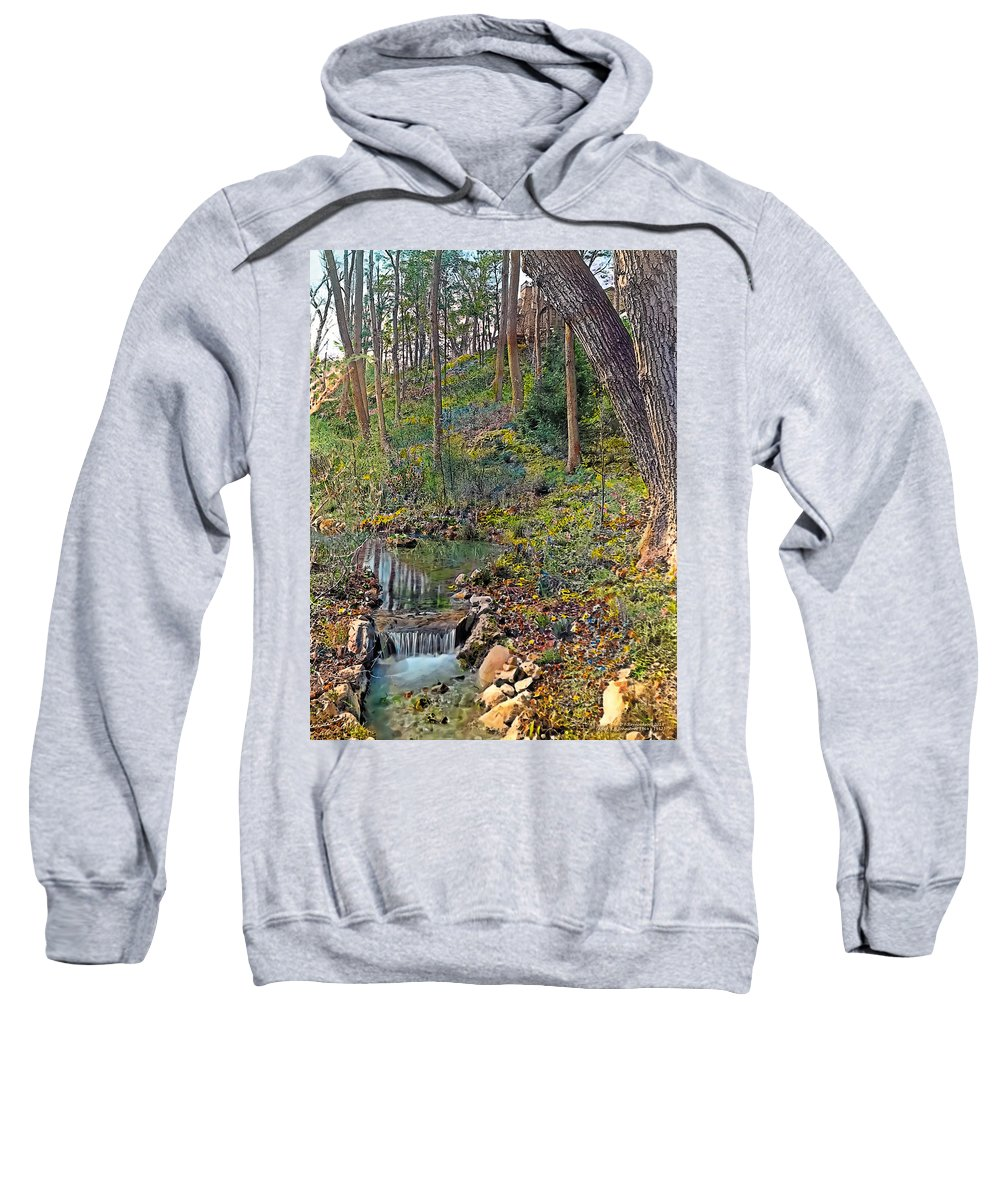 Tranquil Sweatshirt featuring the painting Brook by Terry Reynoldson