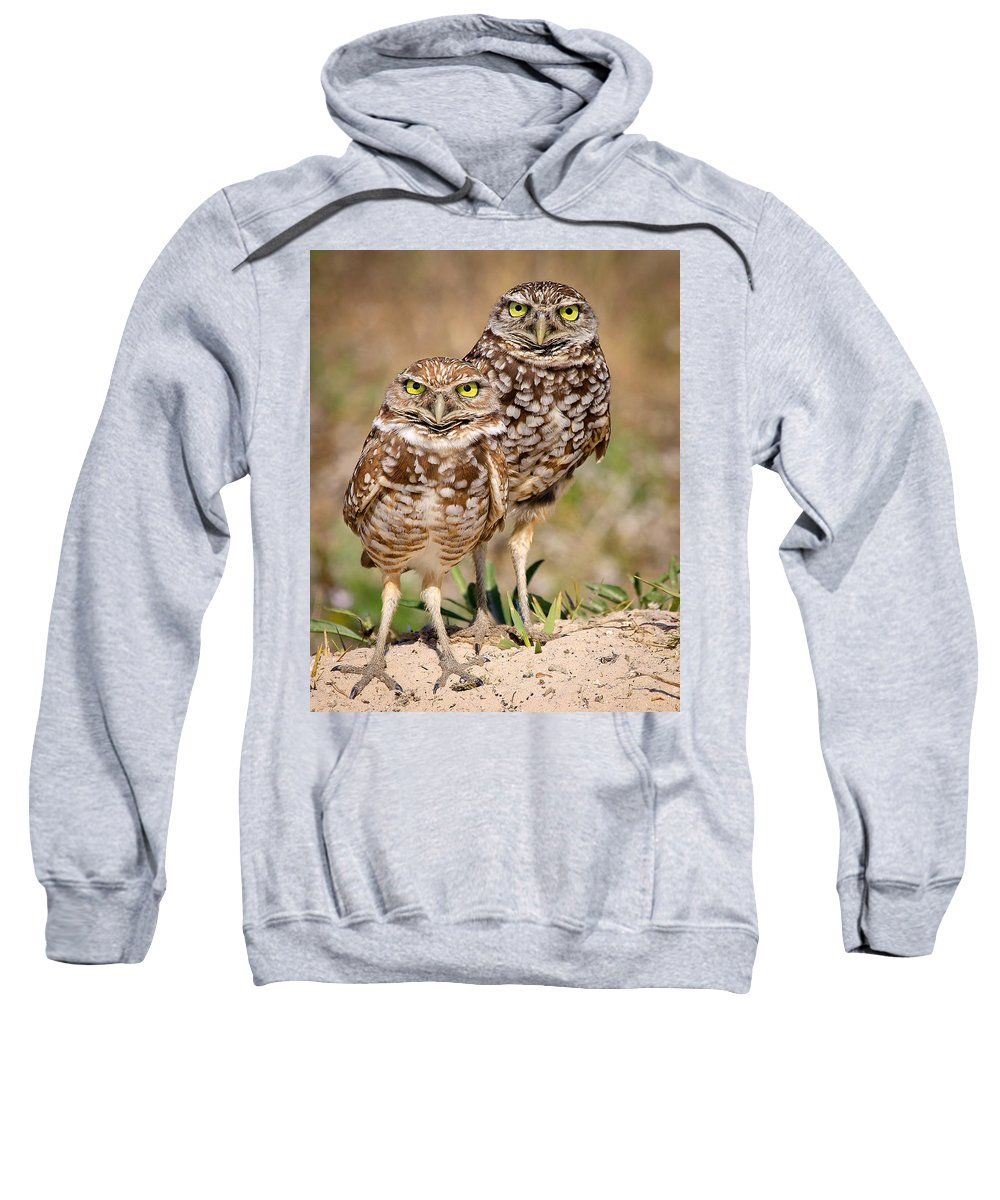 Sweatshirt featuring the photograph Burrowing Owls by Dennis Goodman