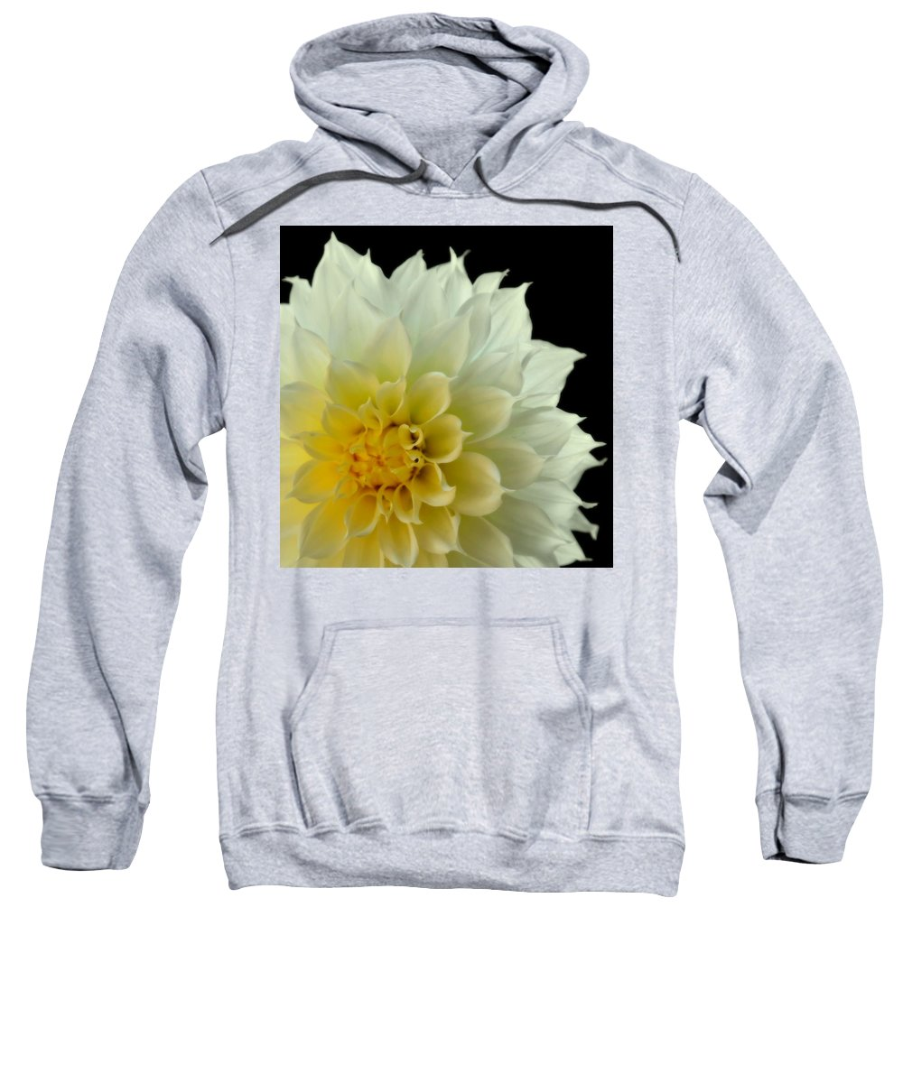 Dahlias Sweatshirt featuring the photograph Burst Of Life by Karen Wiles