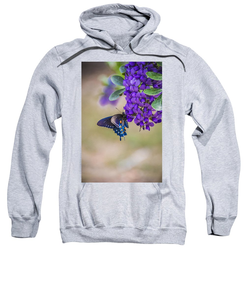Mountain Laurel Sweatshirt featuring the photograph Butterfly Mountain by Debbie Karnes