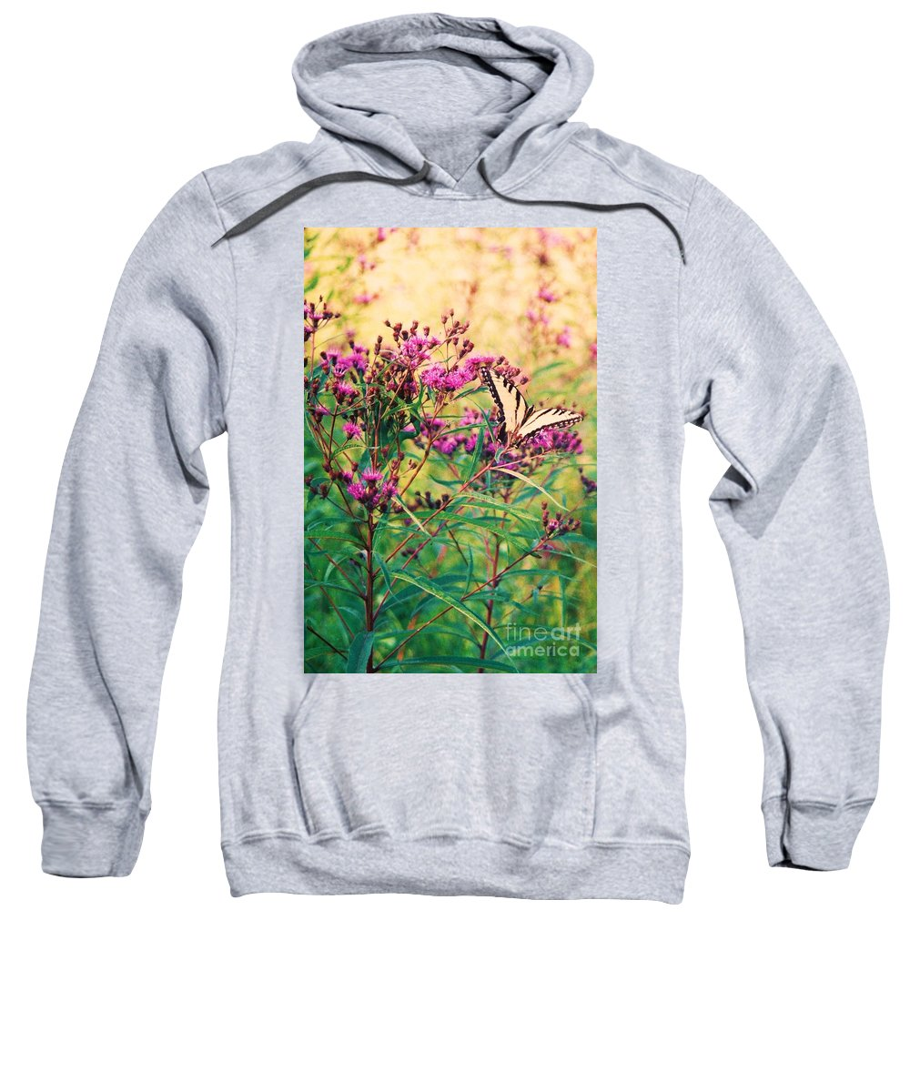Floral Sweatshirt featuring the painting Butterfly Wildflower by Eric Schiabor
