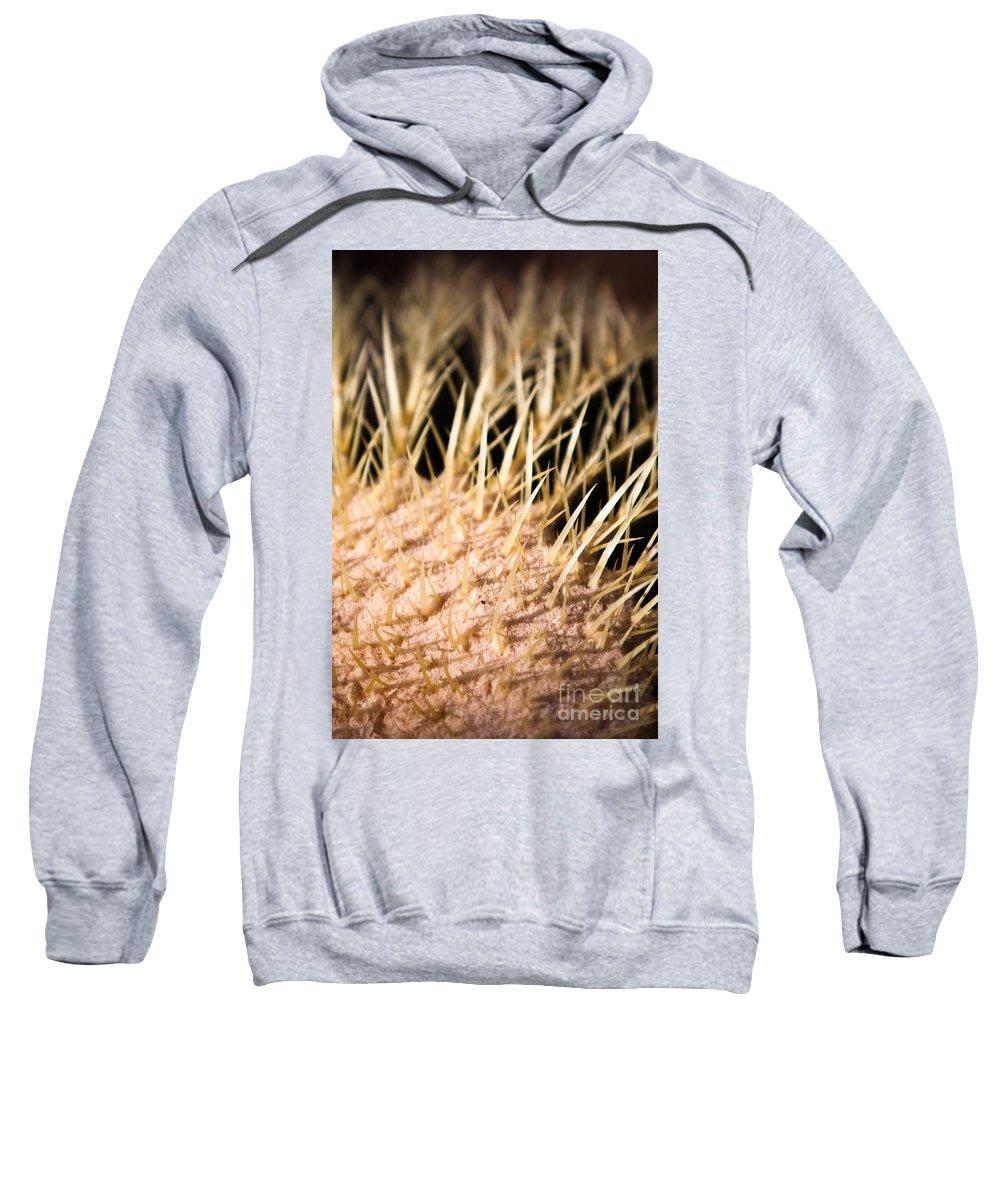 Botanical Sweatshirt featuring the photograph Cactus Skin by John Wadleigh