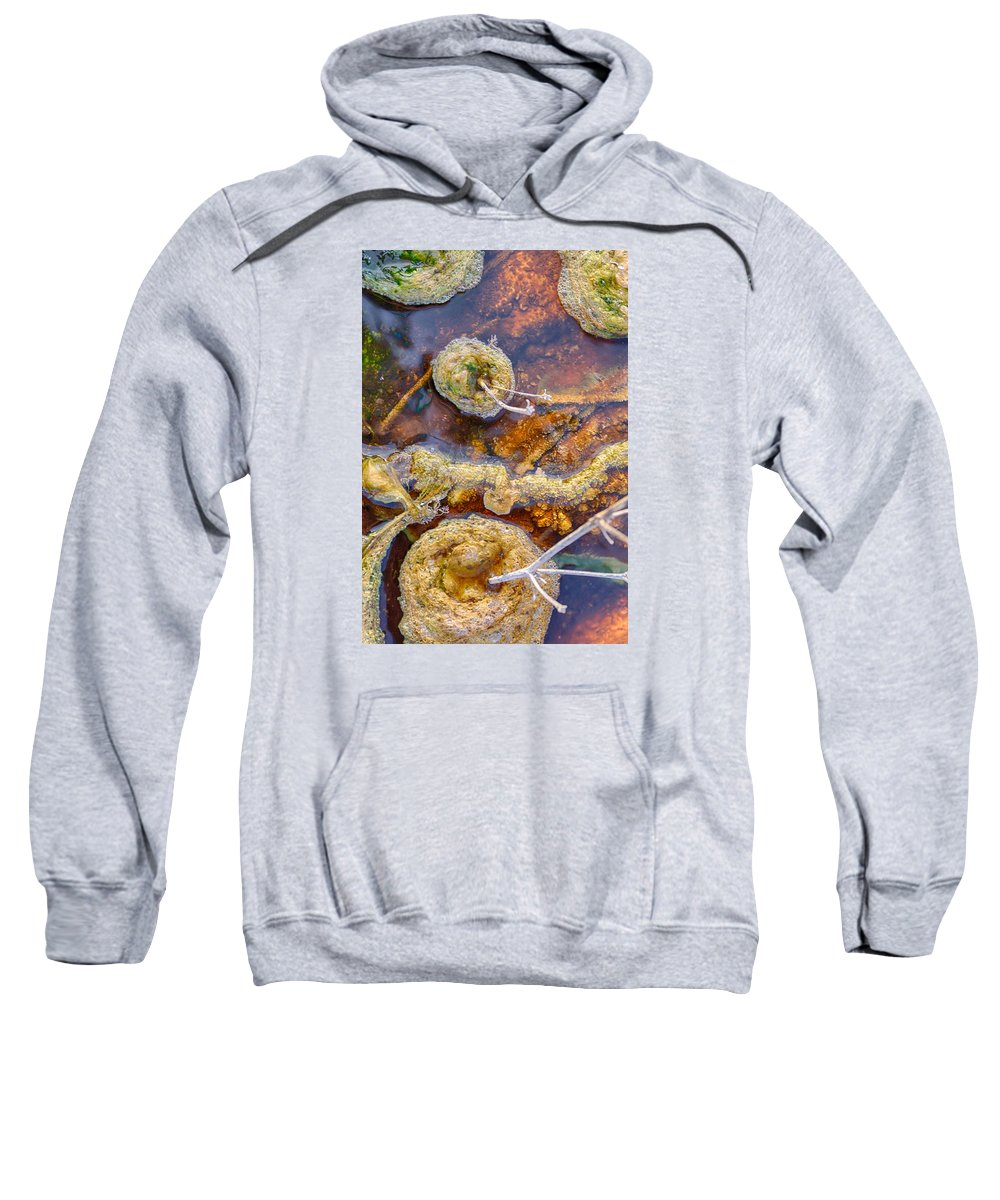 Hot Sweatshirt featuring the photograph Cafe Au Lait Hot Springs by Scott Campbell