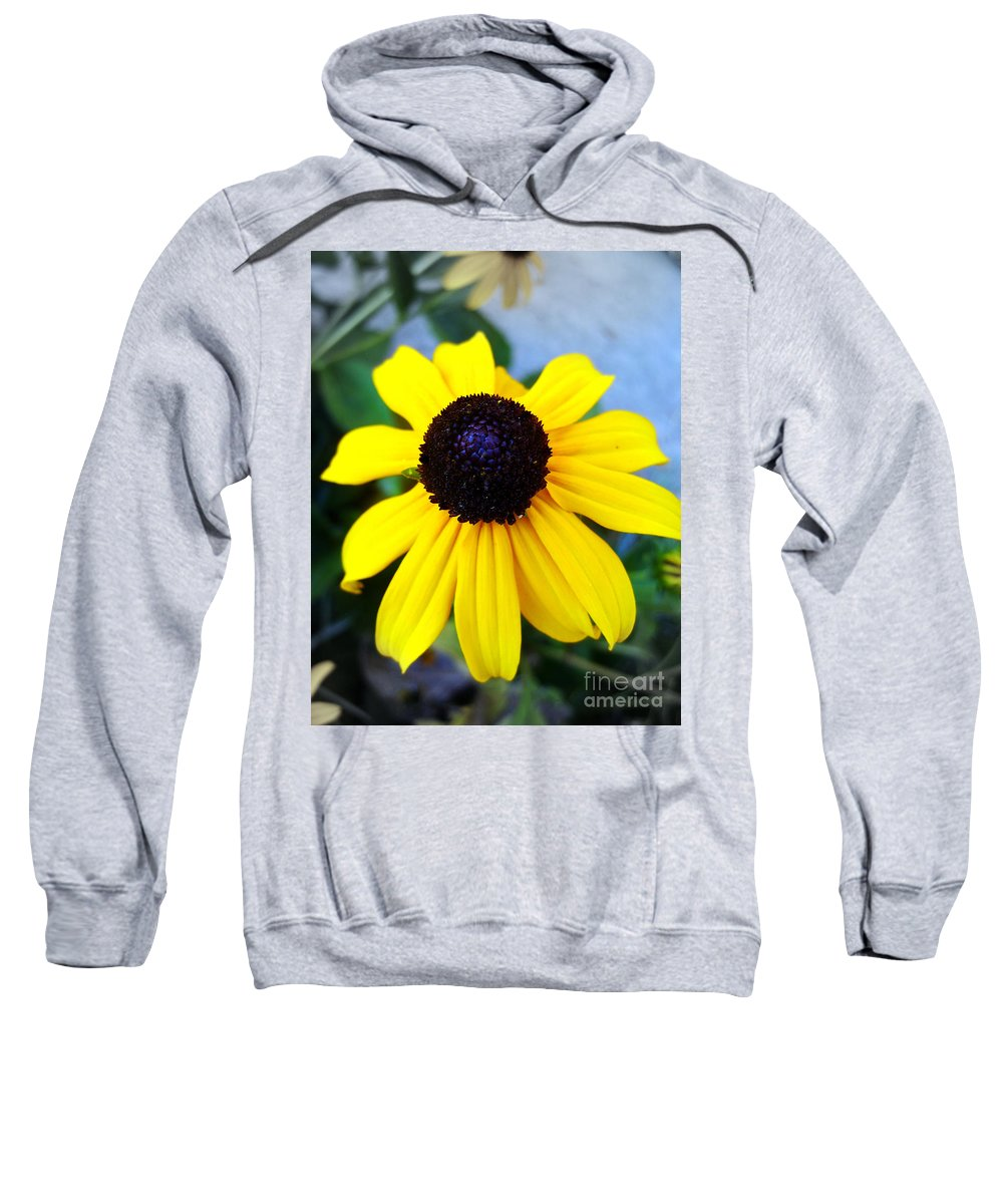 Calendula Sweatshirt featuring the photograph Calendula by Nina Ficur Feenan