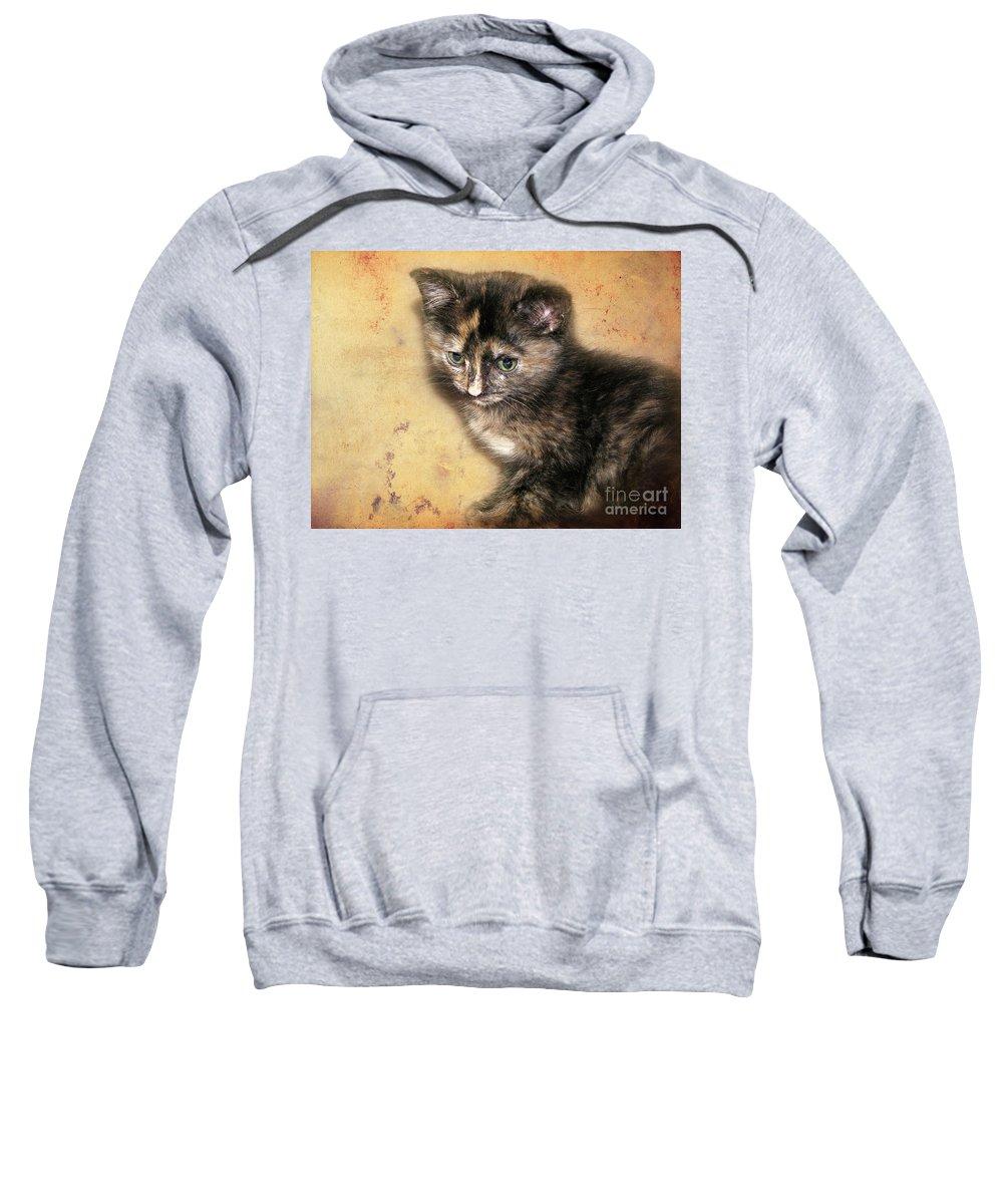 Kitten Sweatshirt featuring the photograph Carmel by Ellen Cotton