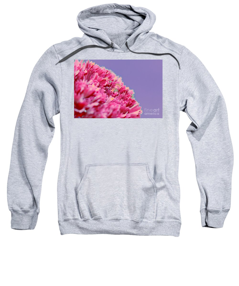 Carnation Sweatshirt featuring the digital art Carnation by Carol Lynch