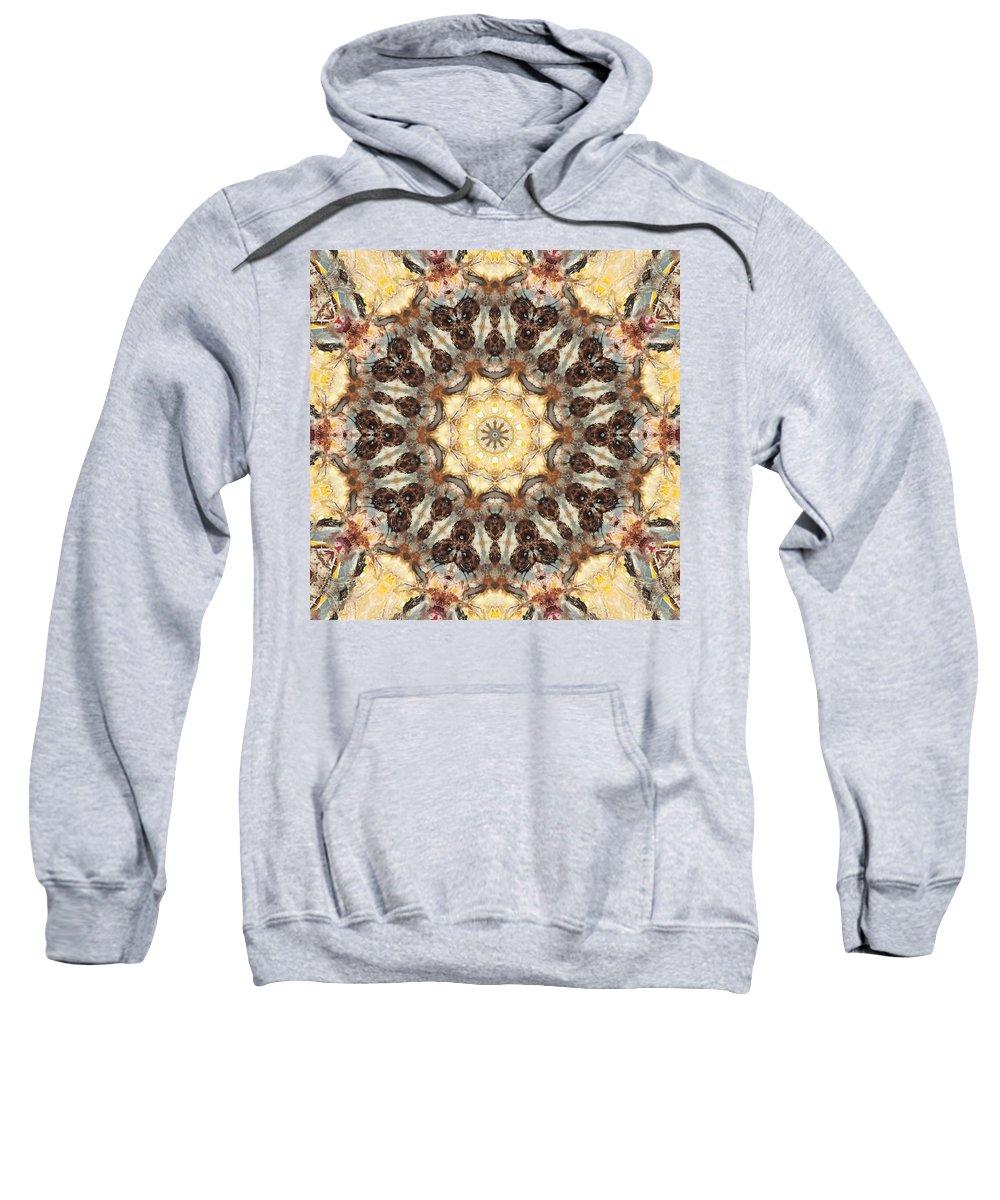 Mandala Sweatshirt featuring the photograph Cecropia Sun 3 by Lisa Lipsett