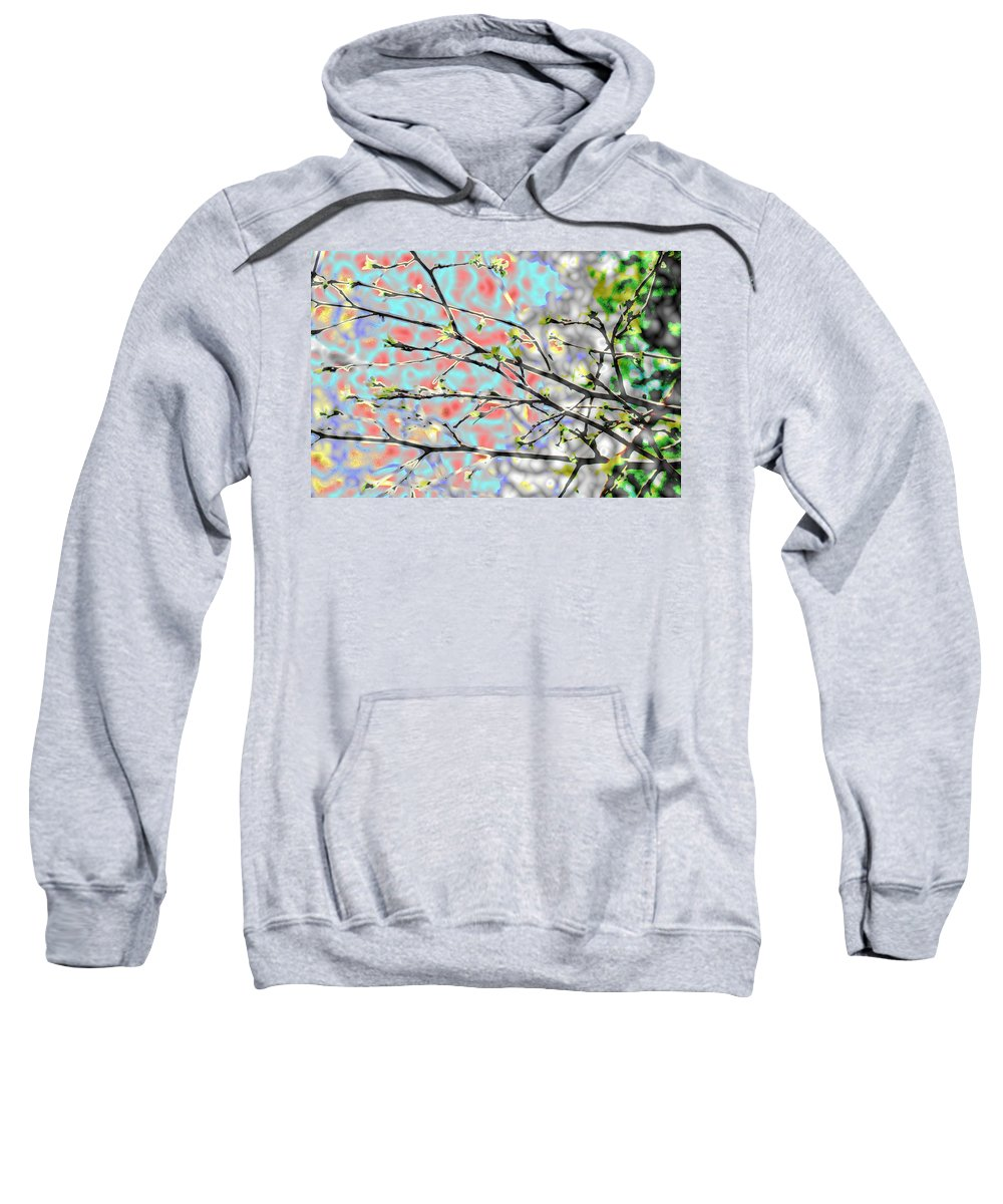 Abstract Sweatshirt featuring the photograph Change To Spring by Barbara S Nickerson