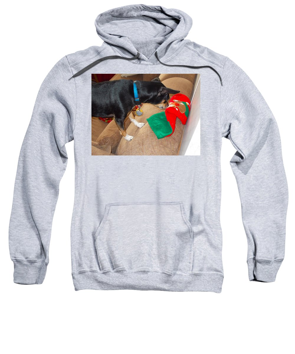 Sweatshirt featuring the photograph Looking For His Gifts by Chris W Photography AKA Christian Wilson