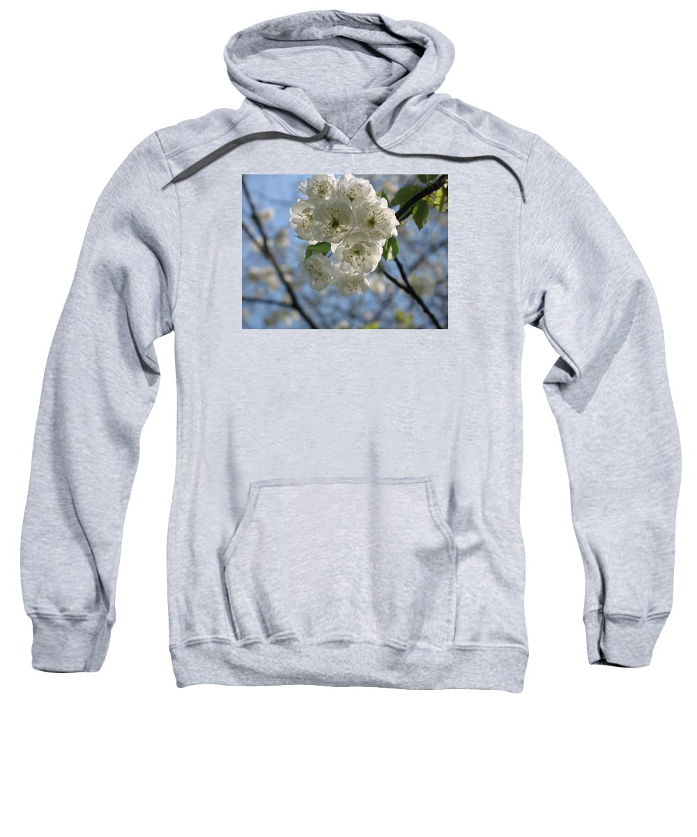Cherry Sweatshirt featuring the photograph Cherry Tree Petals by Christiane Schulze Art And Photography