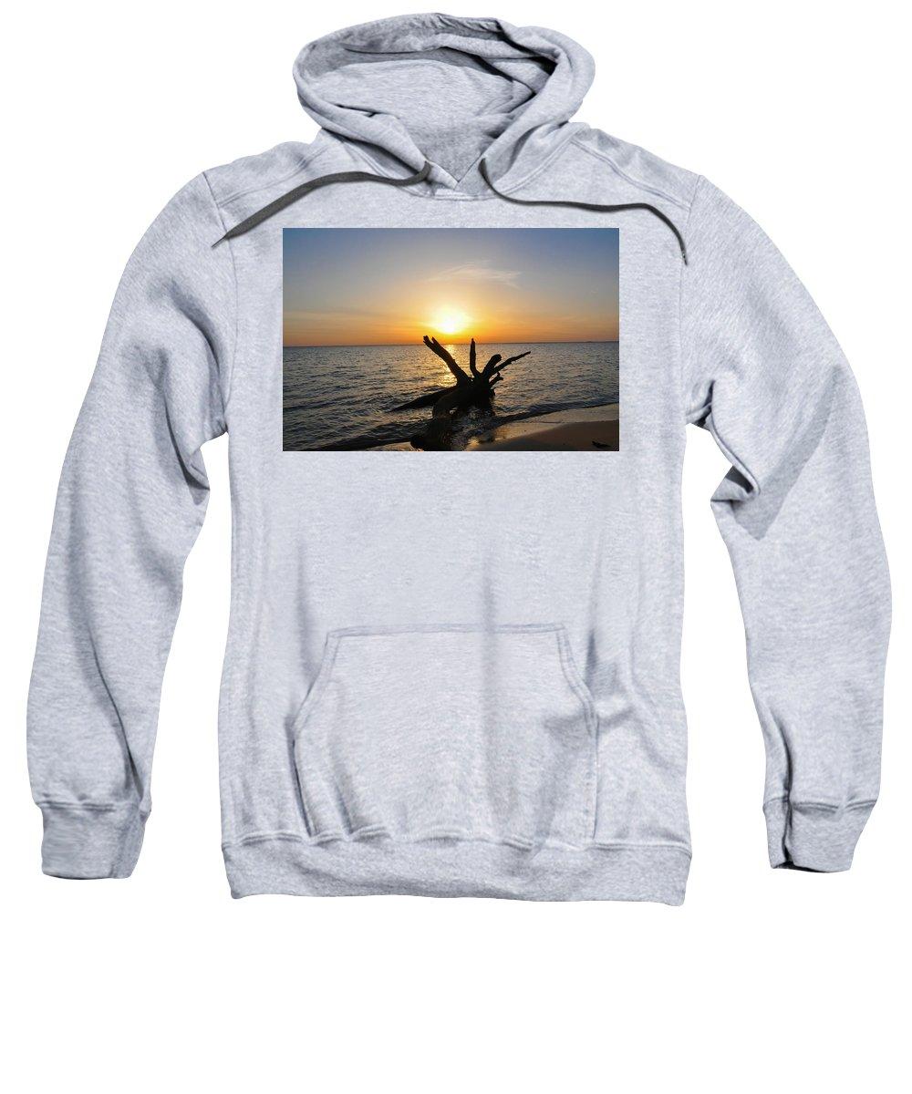 Chesapeake Sweatshirt featuring the photograph Chesapeake Bay Driftwood At Sunset by Bill Cannon