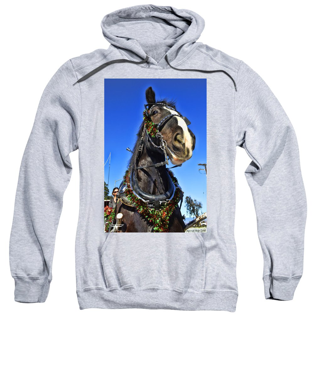 Draft Horse Sweatshirt featuring the photograph Christmas Shire 2 by Tommy Anderson