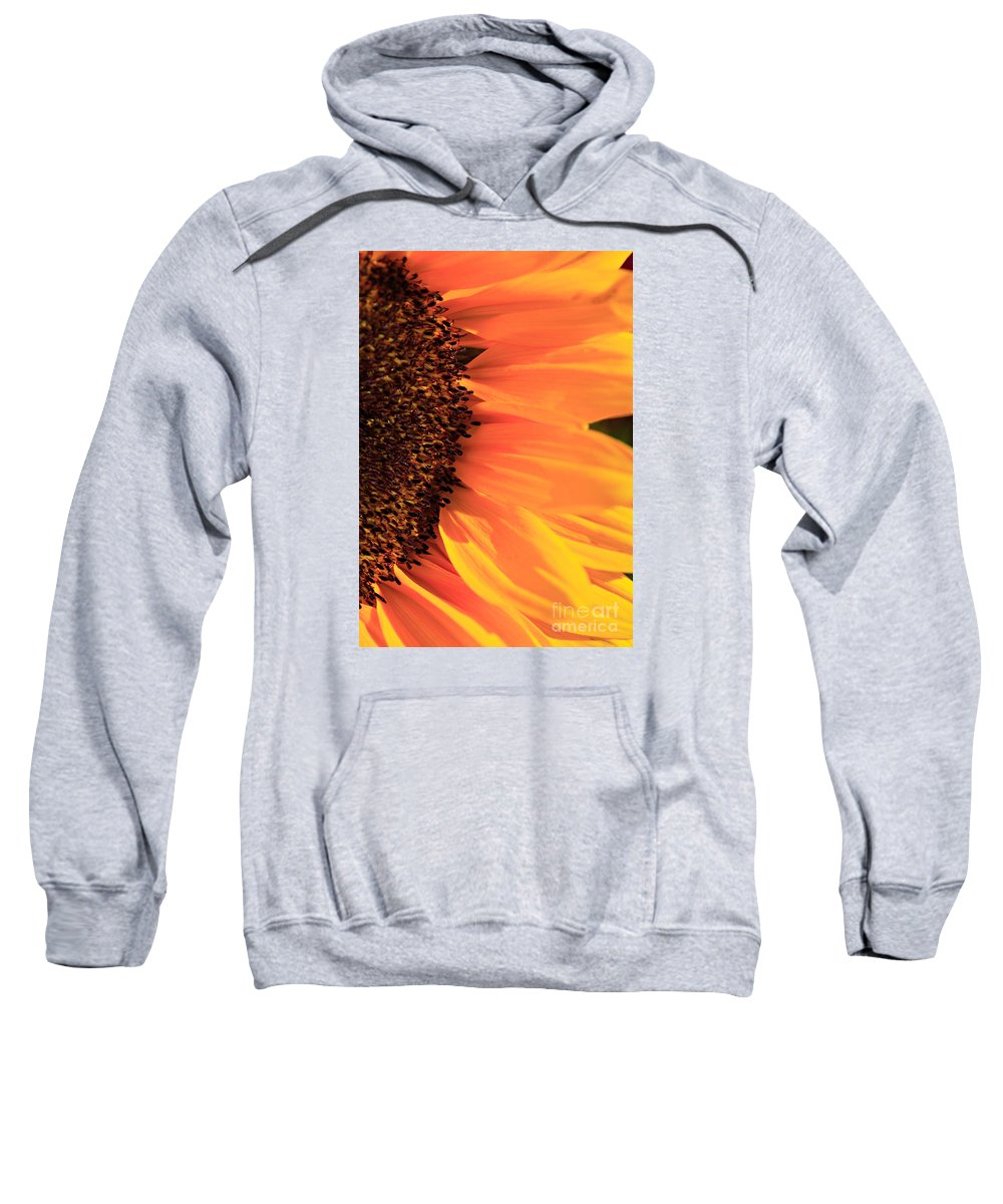Anther Sweatshirt featuring the photograph Close Up Of The Florets And Petals Of A Sunflower by Deborah Benbrook