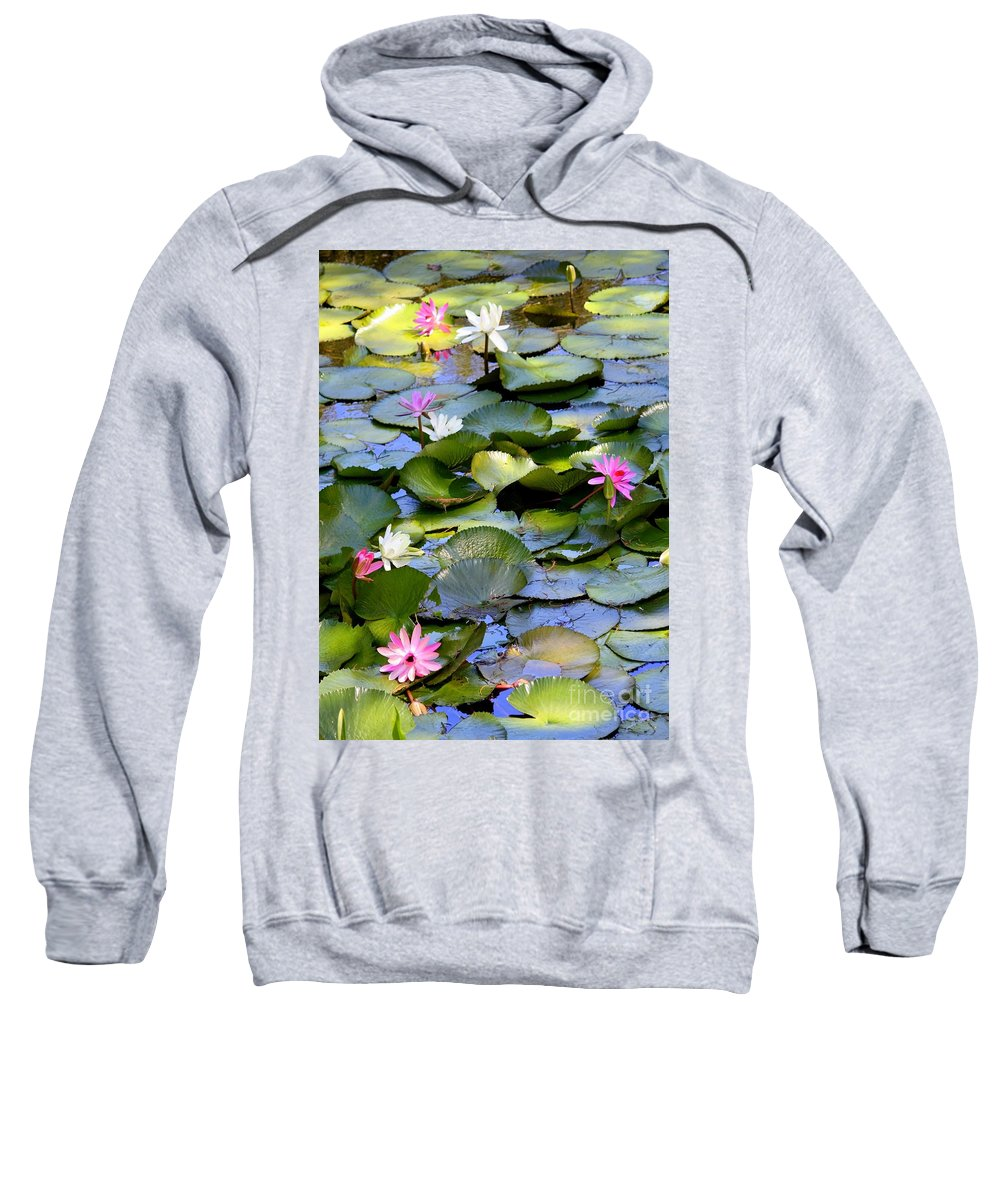Water Lilies Sweatshirt featuring the photograph Colorful Water Lily Pond by Carol Groenen