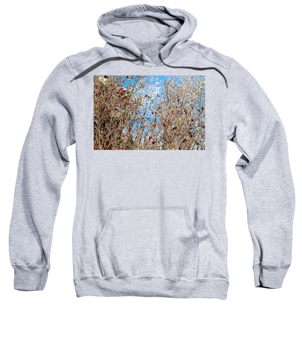 Winter Sweatshirt featuring the photograph Colorful Winter Wonderland by Frozen in Time Fine Art Photography