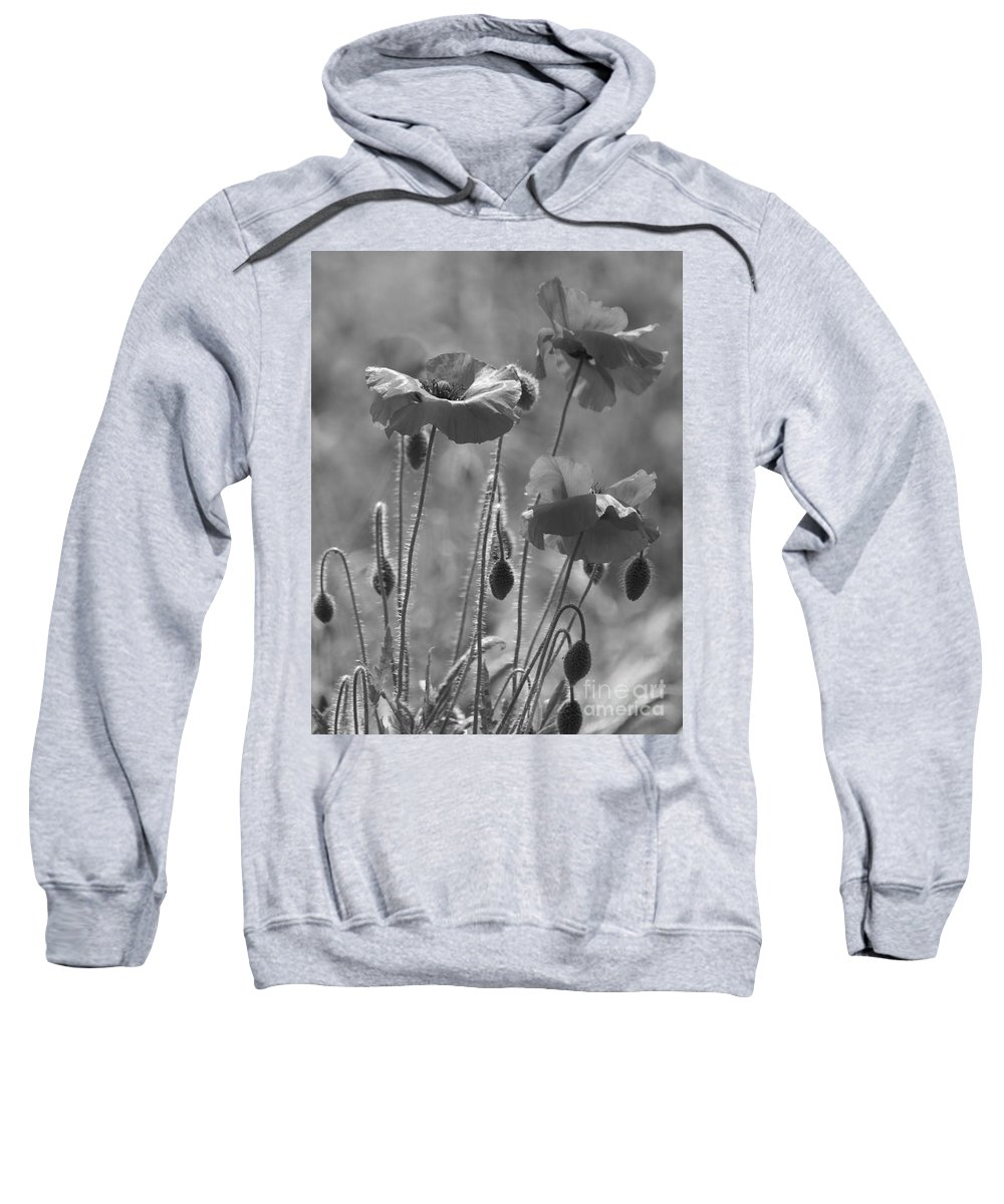 Poppies Sweatshirt featuring the photograph Colour Blind Poppies 1 by Carol Lynch