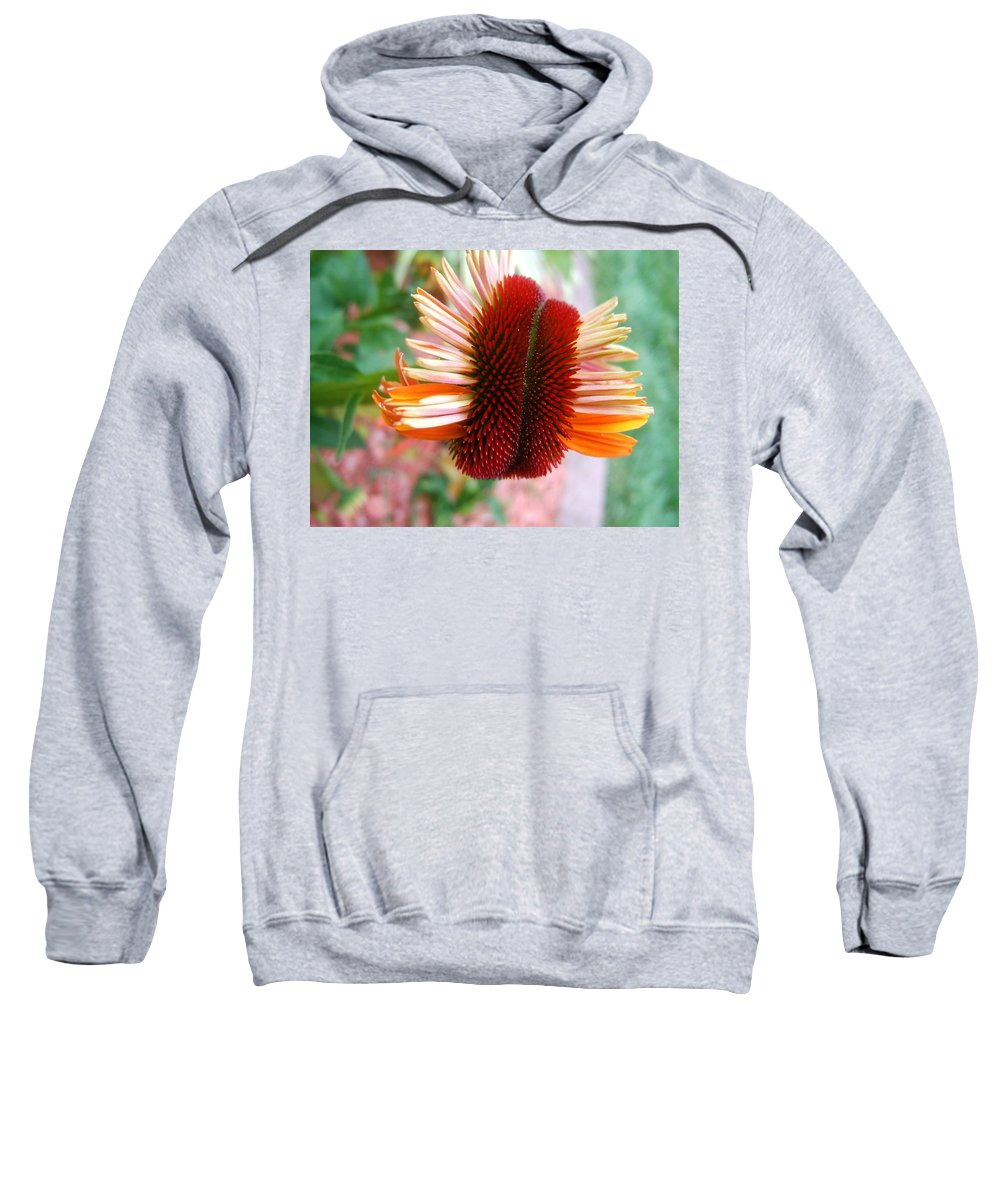 Flower Sweatshirt featuring the photograph Coneflower Bloom Unspiraling by Elaine Duras
