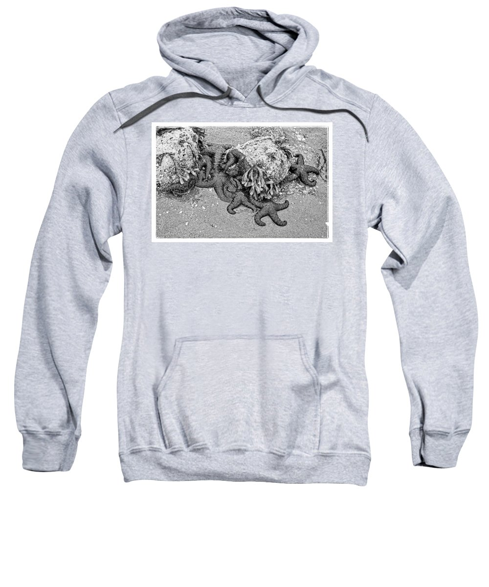 Hidden Sweatshirt featuring the photograph Connected by Roxy Hurtubise