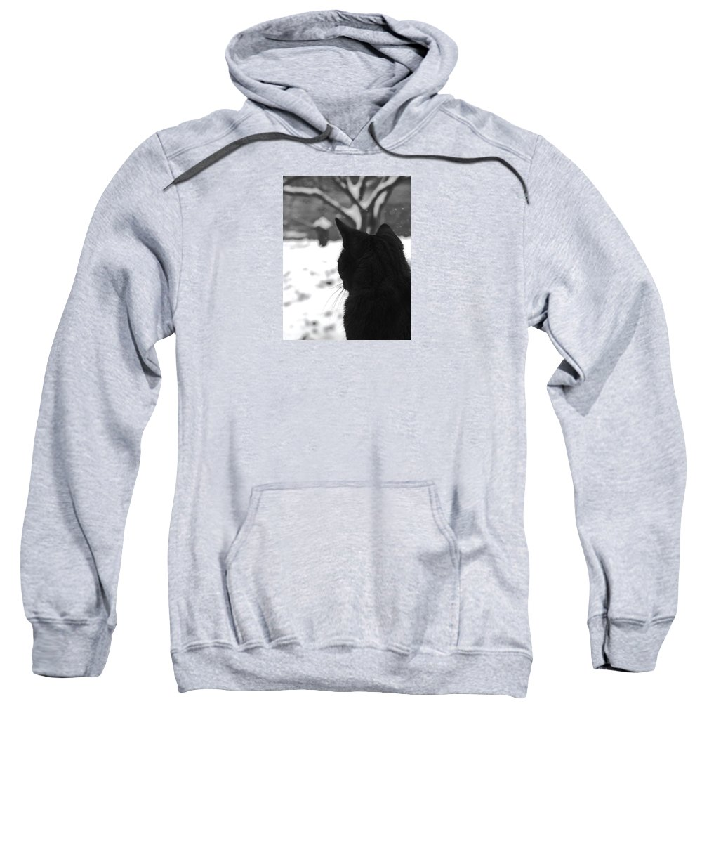 Cats Sweatshirt featuring the photograph Contemplating Winter by Angela Davies