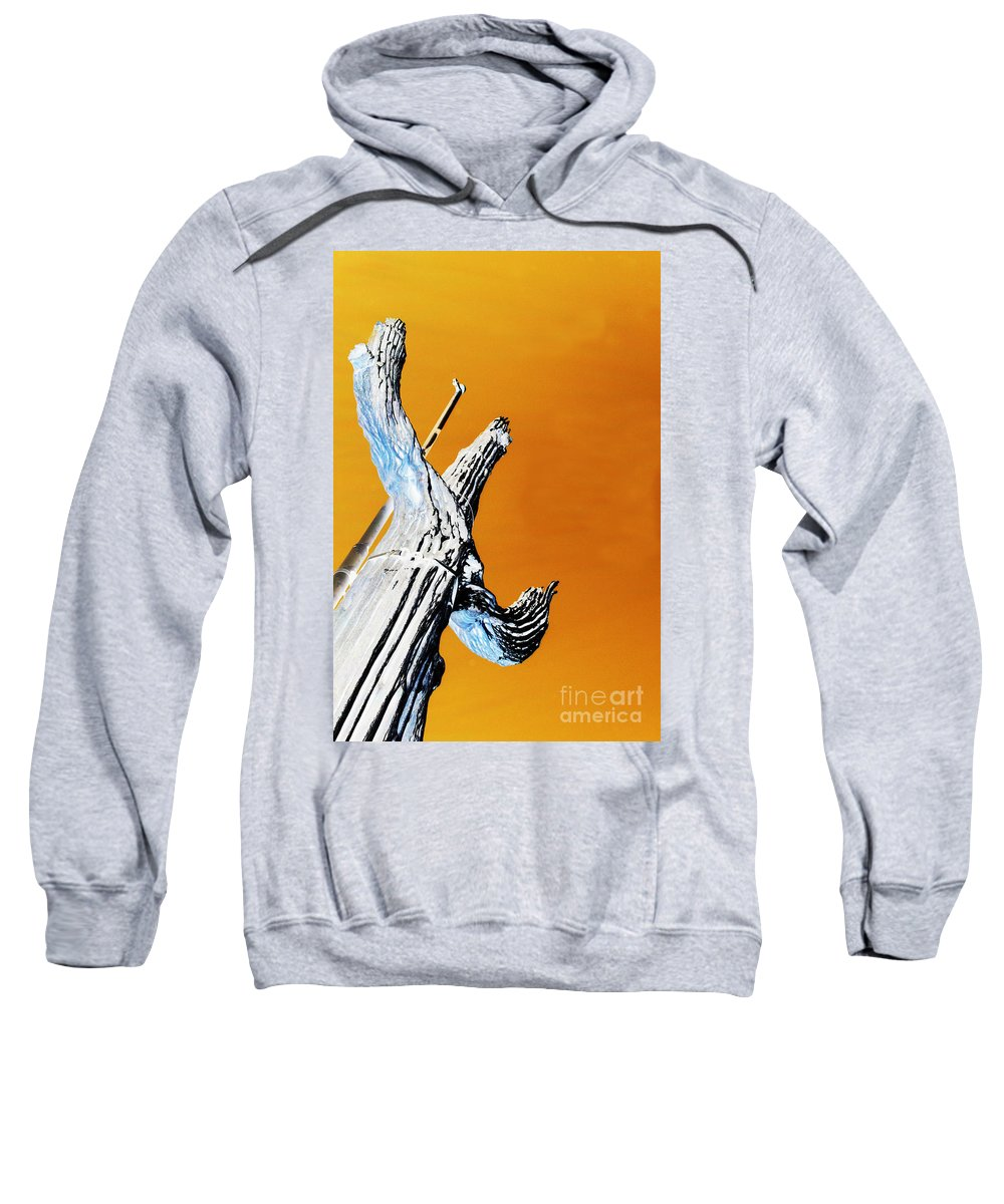 Jamie Lynn Gabrich Sweatshirt featuring the photograph Cow Boy Inverted by Jamie Lynn