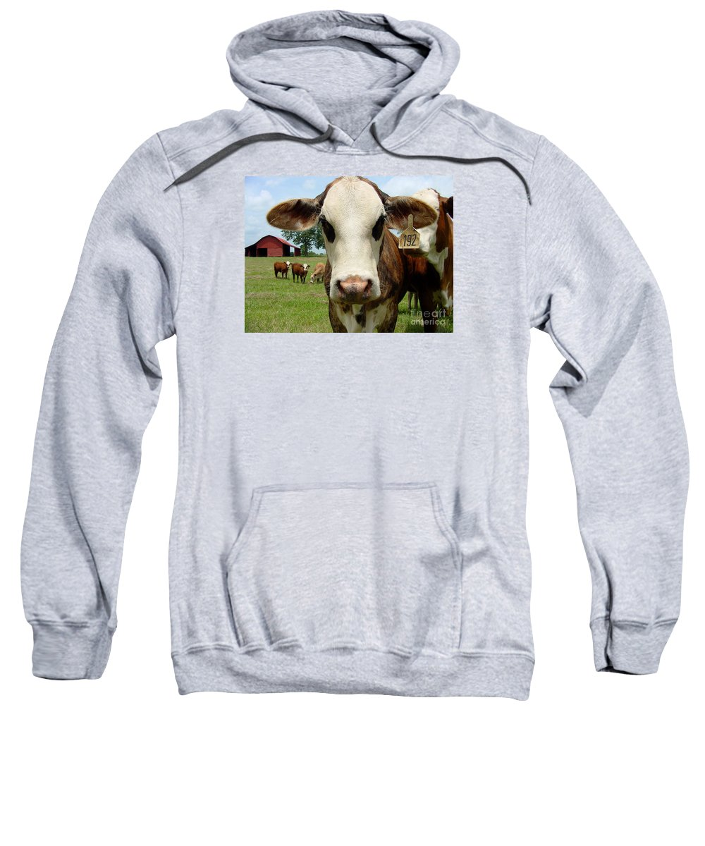 Cow Sweatshirt featuring the photograph Cows8957 by Gary Gingrich Galleries