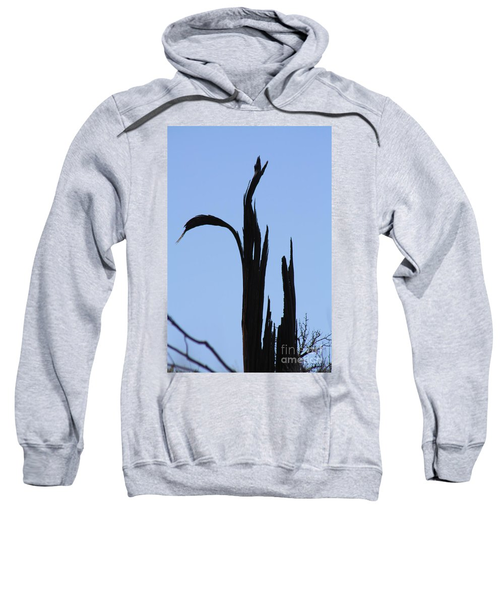 Crane Sweatshirt featuring the photograph Crane Wood by Brandi Maher
