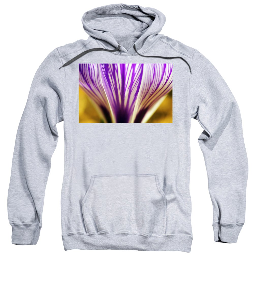 Cup Sweatshirt featuring the photograph Cup of Stripes crocus by Marilyn Hunt