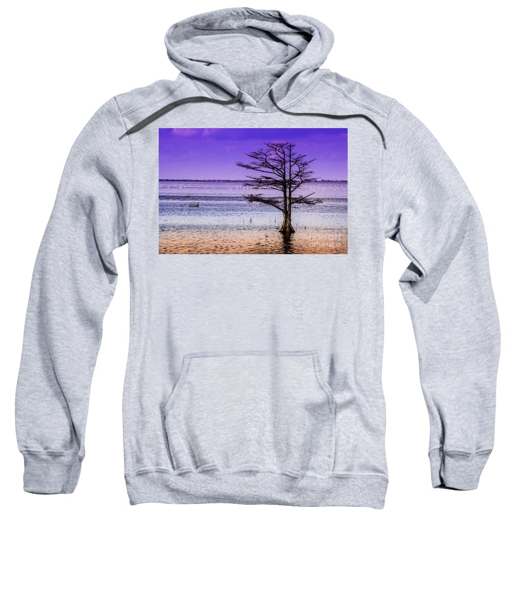 Cypress Sweatshirt featuring the photograph Cypress Purple Sky 2 by Scott Hervieux
