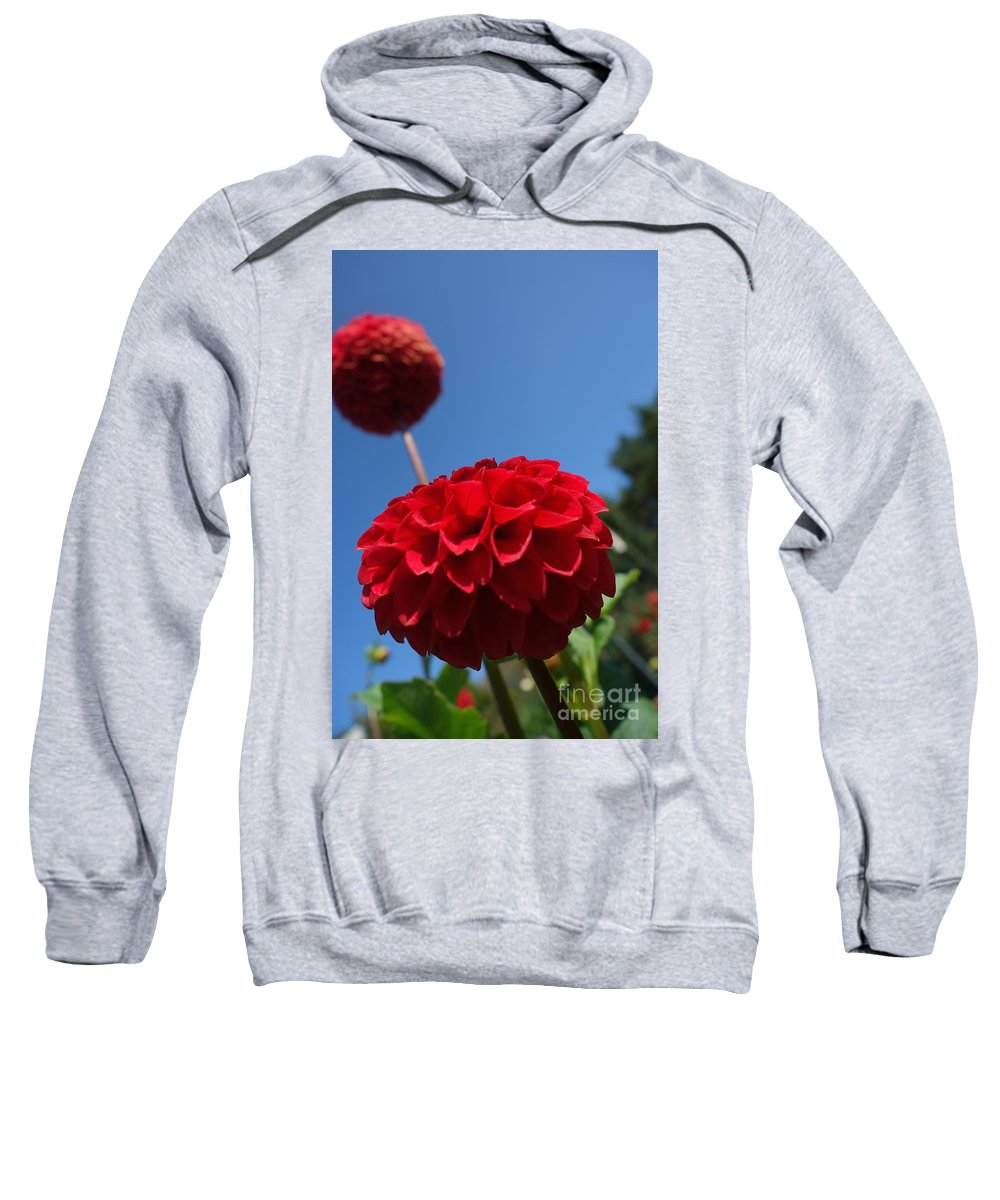 Flowing Sweatshirt featuring the photograph Dahlia #4 by Jacqueline Athmann