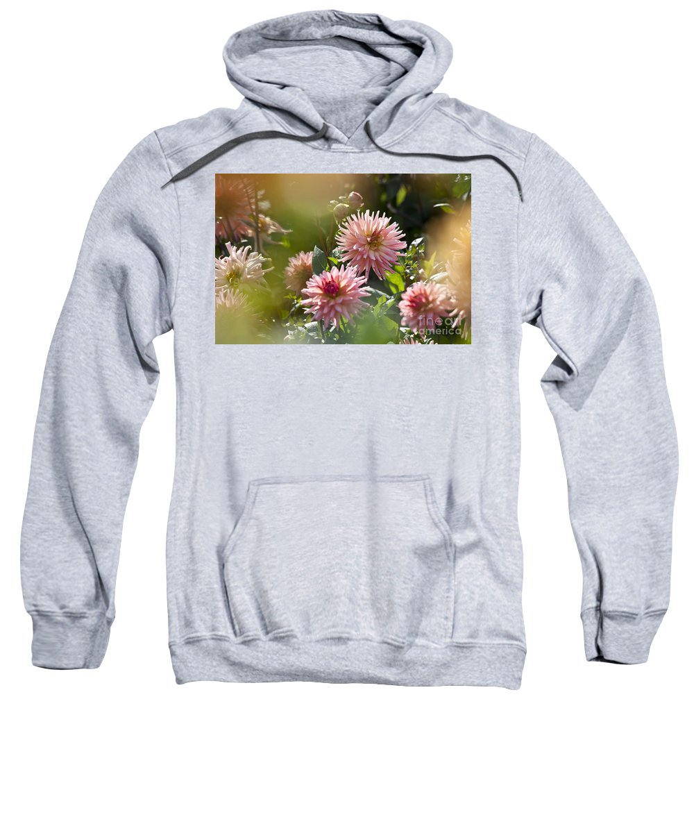 Heiko Sweatshirt featuring the photograph Dahlia Garden by Heiko Koehrer-Wagner