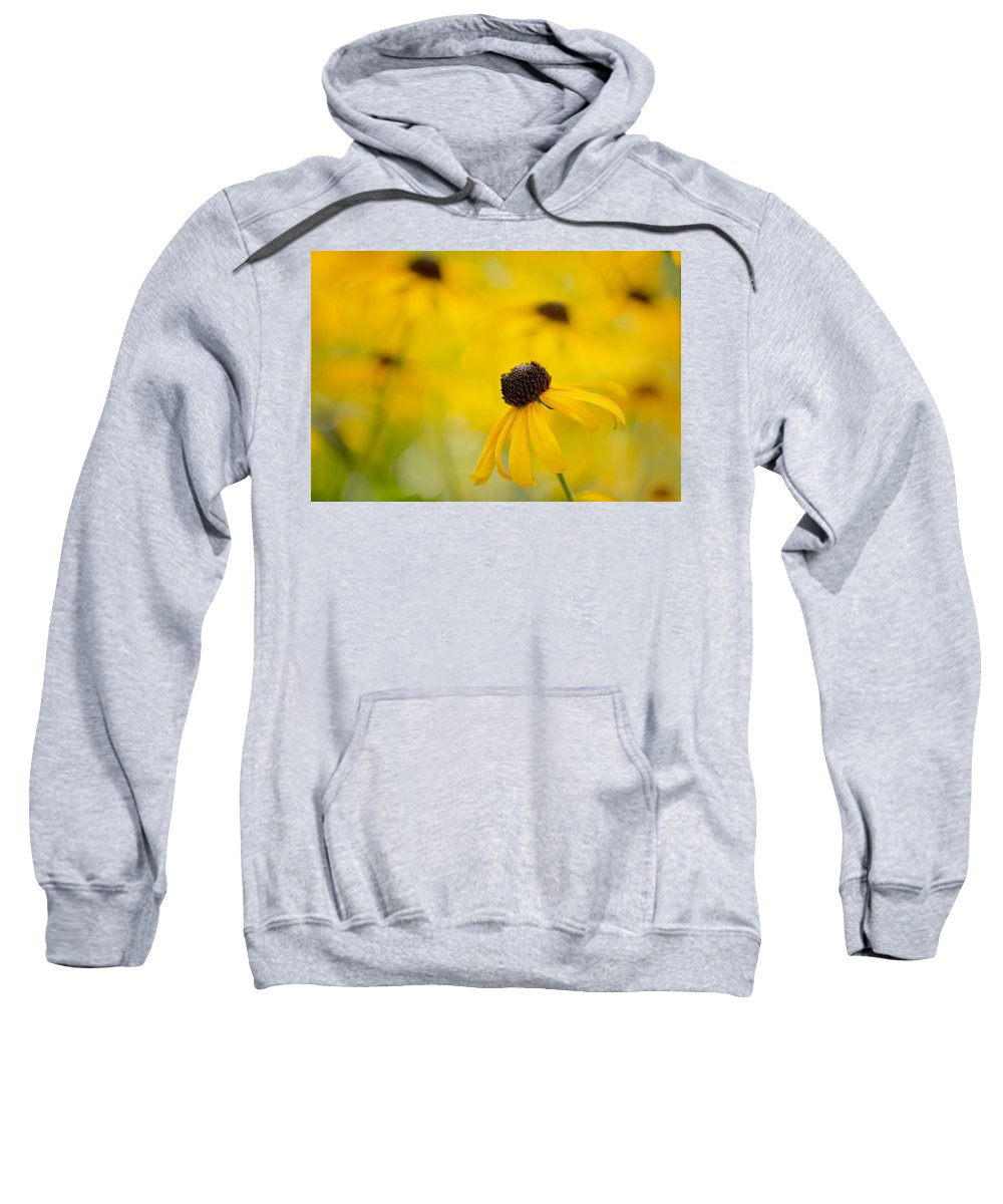 Yellow Sweatshirt featuring the photograph Dancing Susan by Linda D Lester